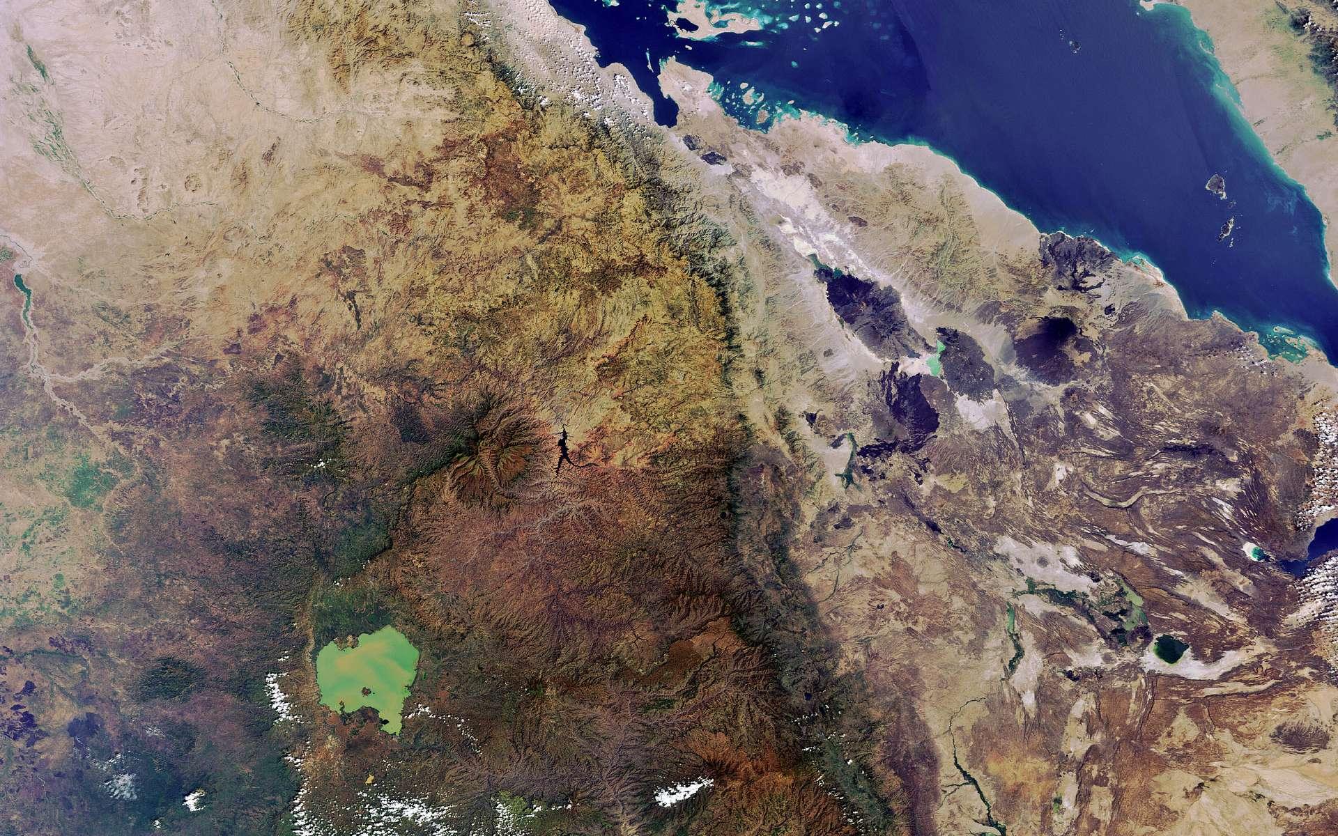 Cette image de la Corne de l'Afrique a été prise le 13 novembre 2011 par la caméra Meris du satellite Envisat de l'Esa. © Esa