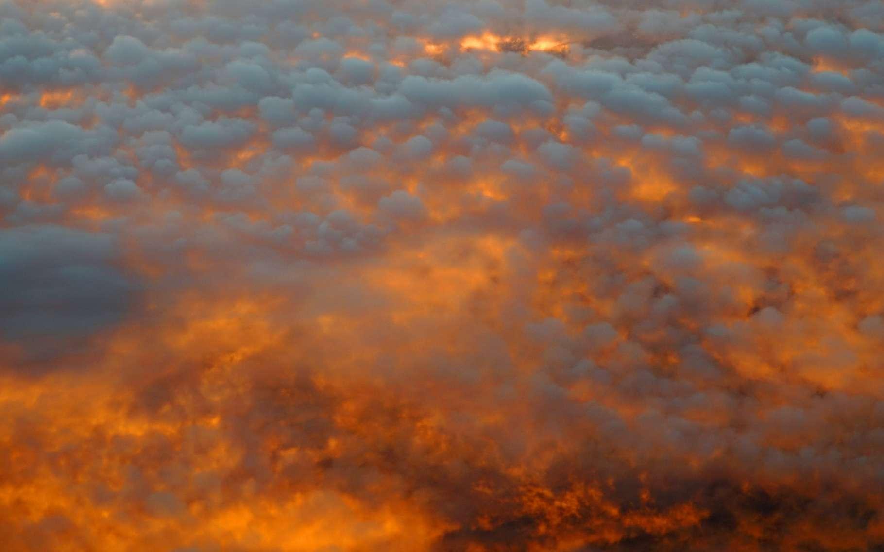 La violence du Bootleg Fire (Oregon, États-Unis) l'amène à générer des pyrocumulus. © nd700, Adobe Stock