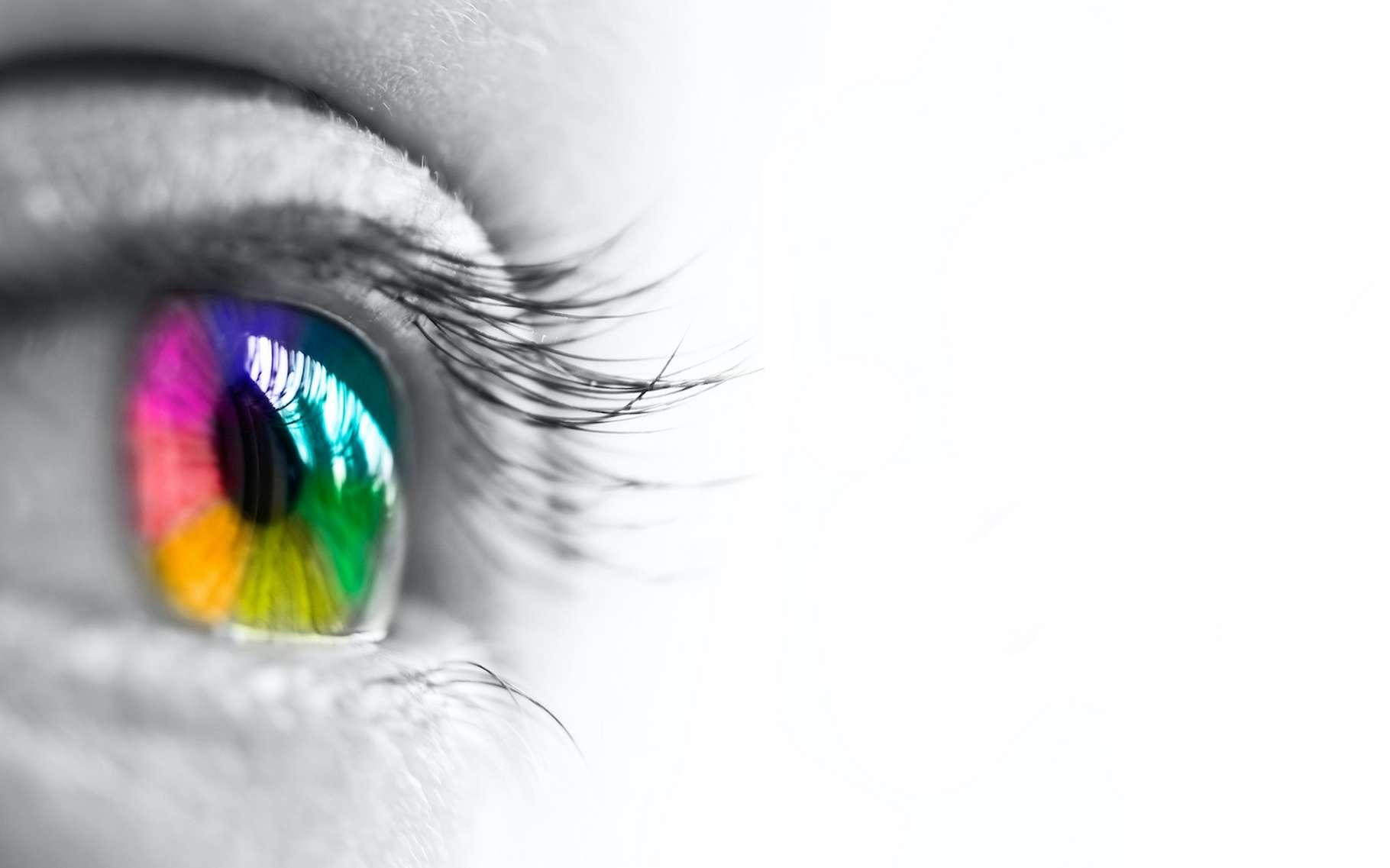 Dans le domaine des infrarouges, il est des « couleurs » que l'œil humain ne peut pas distinguer. Une caméra développée par des chercheurs de l'université de Tel-Aviv (Israël) peut l'y aider. © Delphotostock, Adone Stock
