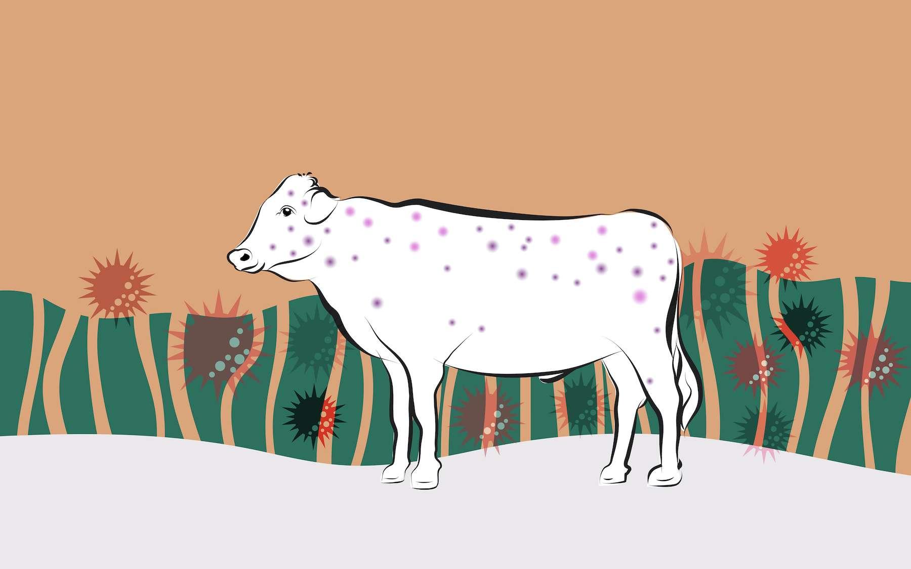 Le système immunitaire des premiers éleveurs s'est adapté en réponse à la hausse des agents pathogènes. © Montrey, Adobe Stock