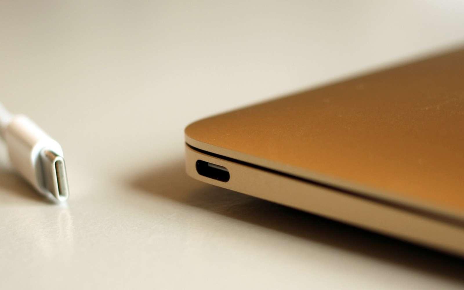 Polyvalente, la technologie USB-C accepte les câbles d'alimentation aussi bien que les accessoires pour transférer et stocker des données. © Maurizio Pesce, Flickr