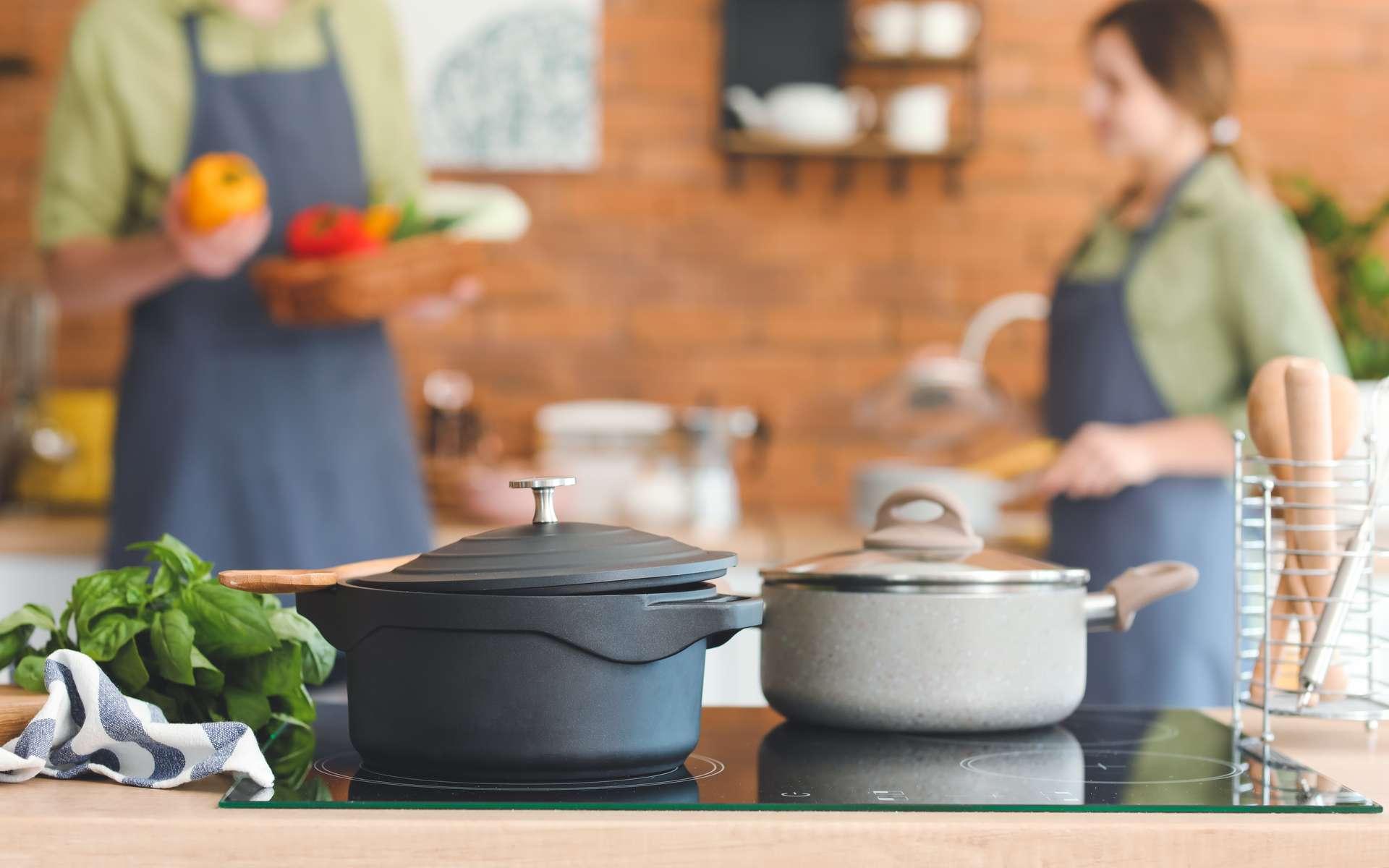 Cuisiner avec une plaque à induction est aussi facile qu'avec une plaque gaz. En revanche, son branchement au tableau électrique impose de respecter les règles imposées par la norme électrique NF C 15-100. © Pixel-Shot, Adobe Stock