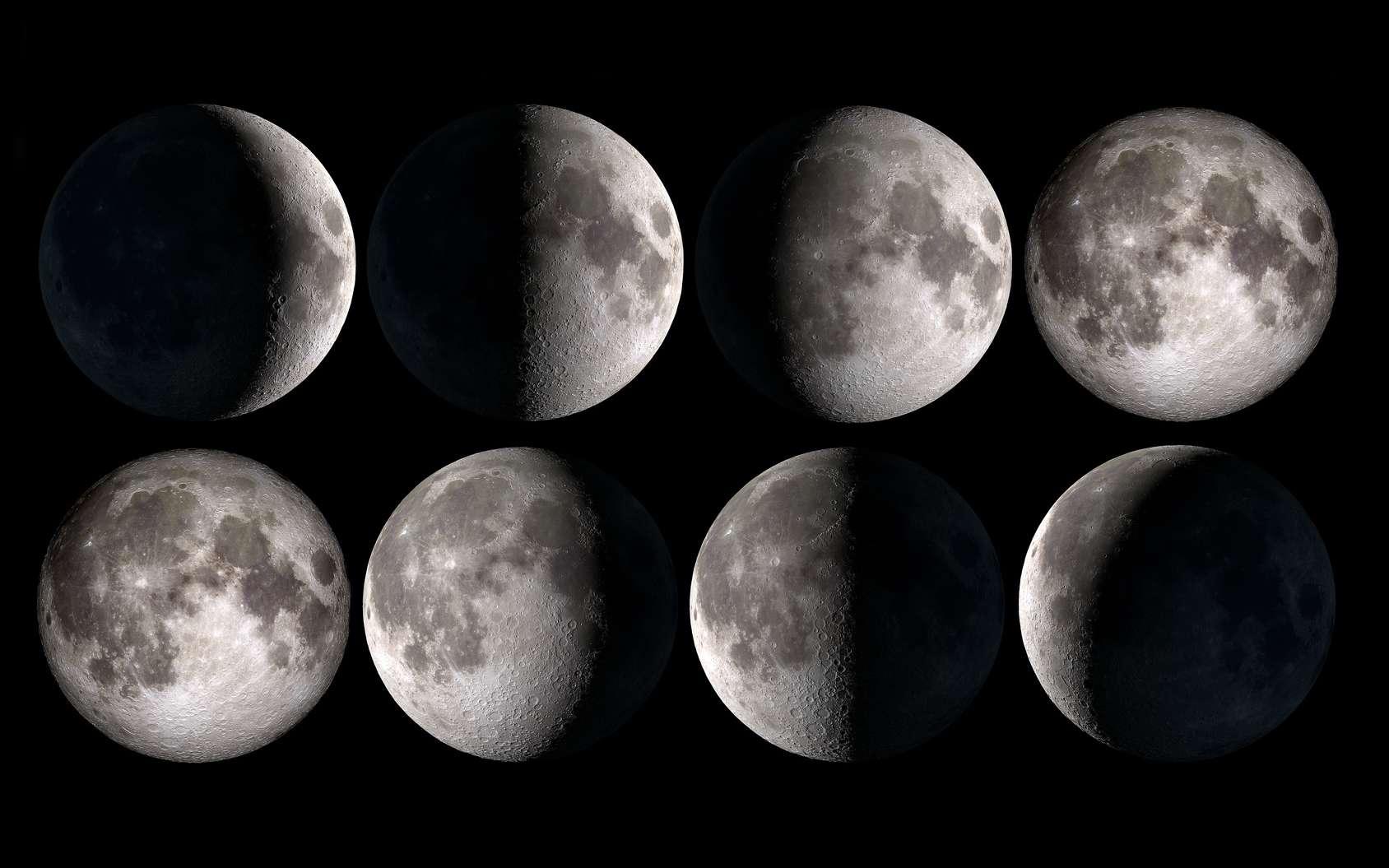 Les différentes phases de la Lune. © Delphotostock, fotolia