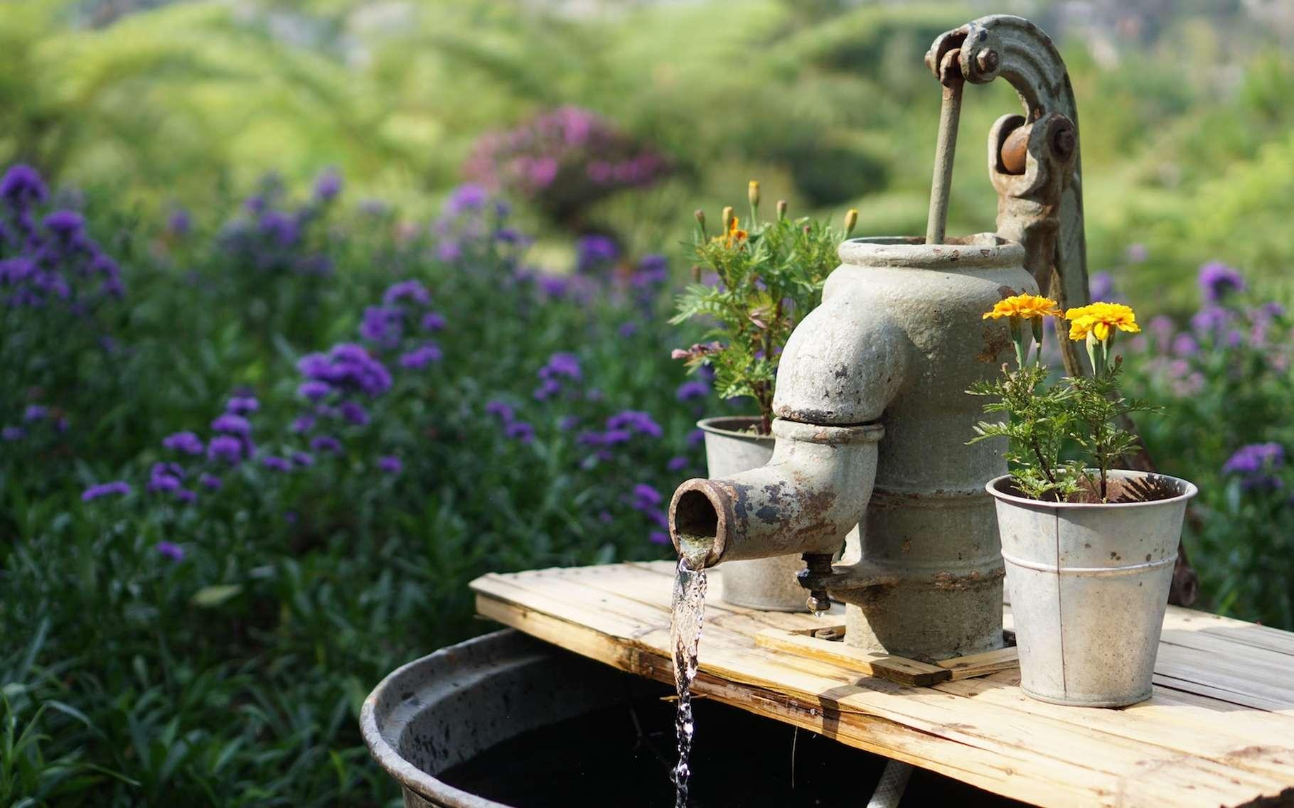 Dans les régions où l'eau est très dure, il est recommandé d'installer un adoucisseur d'eau. © Fikri Rasyid, Unsplash