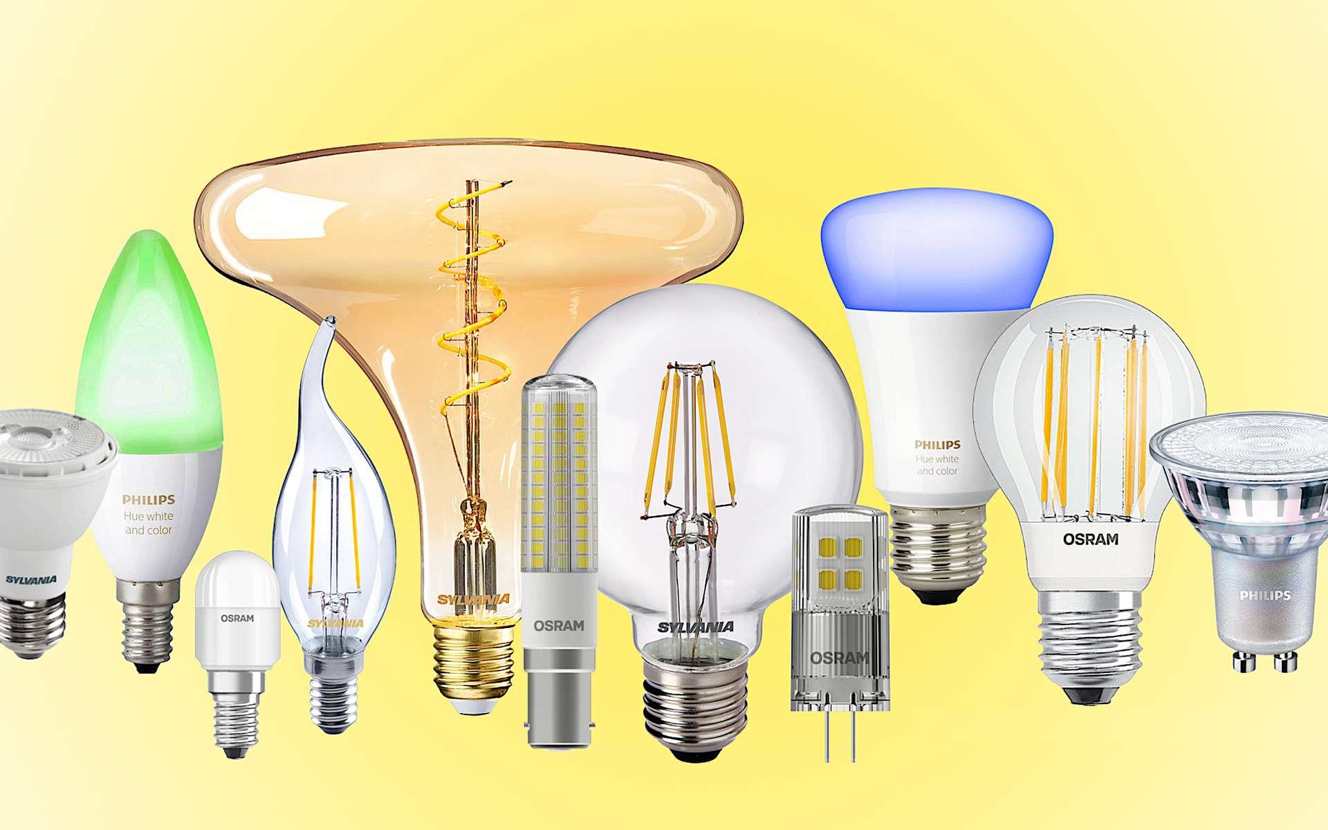 Assortiment d'ampoules LED utilisables dans le résidentiel et le tertiaire. © Montage Futura Maison