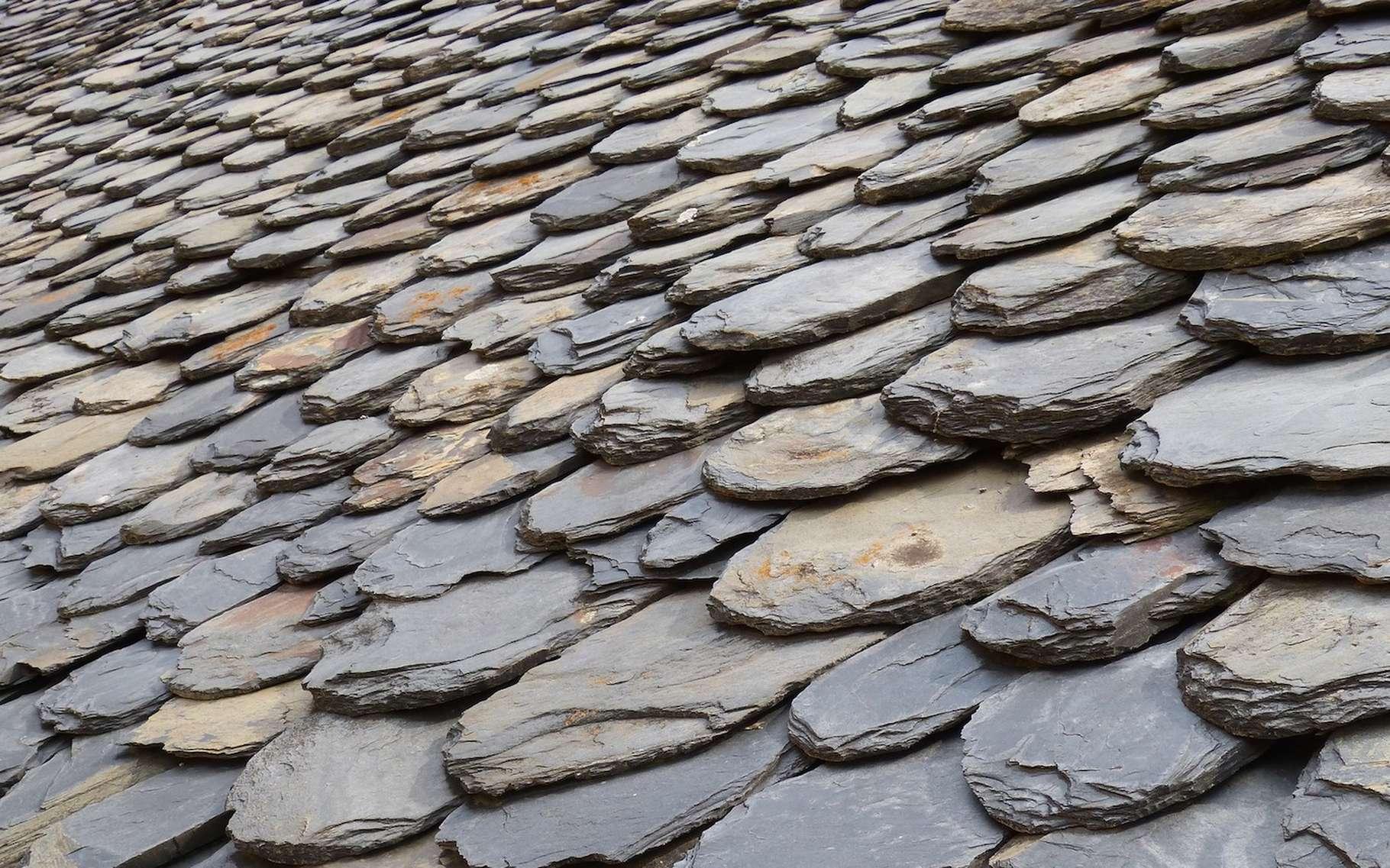 L'ardoise est un schiste particulier, un schiste argileux à grains fins et homogènes qui peut parfois présenter un aspect légèrement satiné. © makamuki0, Pixabay, CC0 Public Domain