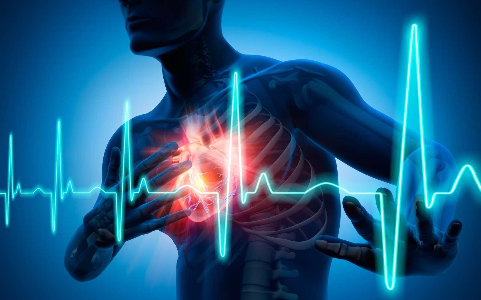 Un patch pourrait réduire les dommages cardiaques après un infarctus du myocarde. © peterschreiber.media, Fotolia