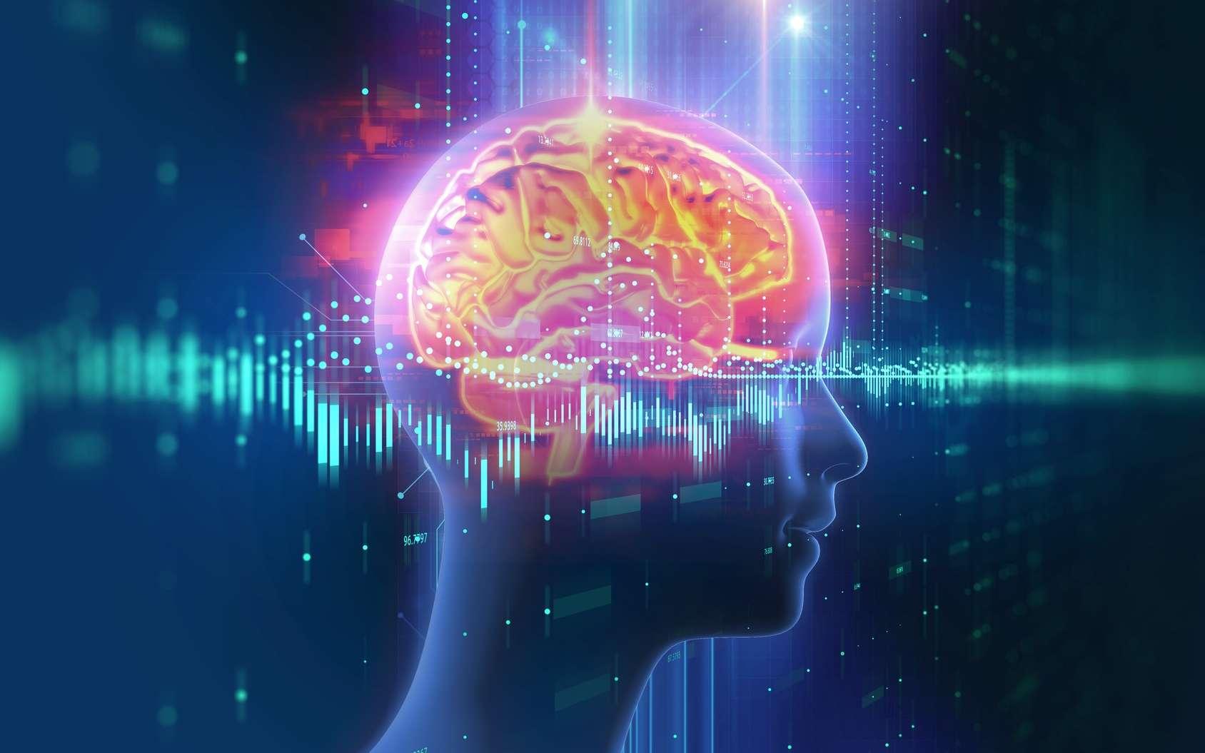 La stimulation transcrânienne améliore la mémoire dite de travail. © monsitj, Fotolia