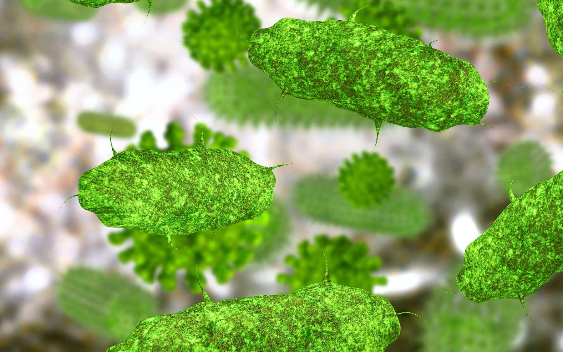 Des bactéries ont été ranimées après avoir passé 100 millions d'années dans des sédiments marins quasiment sans énergie ni oxygène. © fotoliaxrender, Adobe Stock