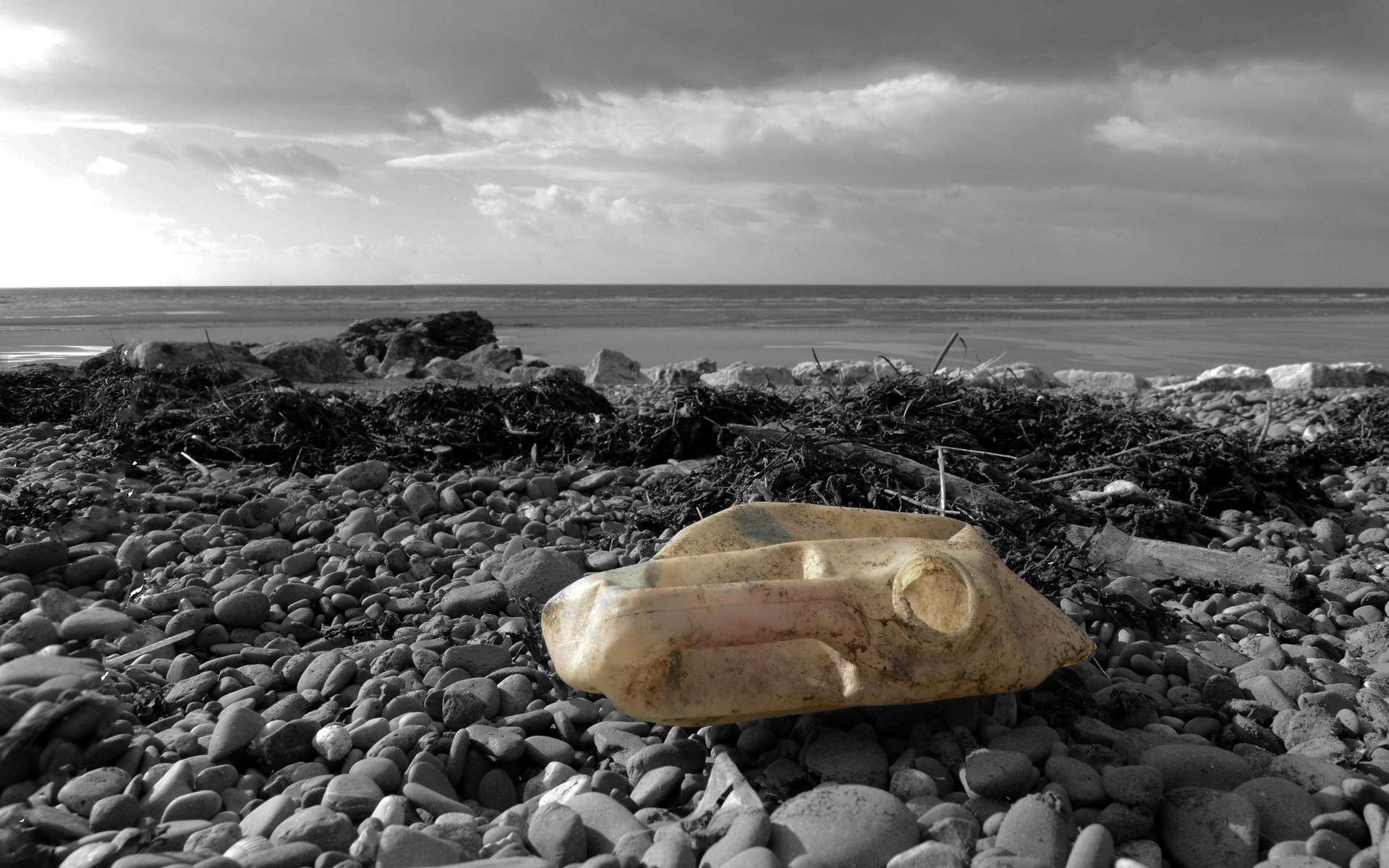 Les déchets plastique, une menace pour la photosynthèse. © Richard Black, Flickr