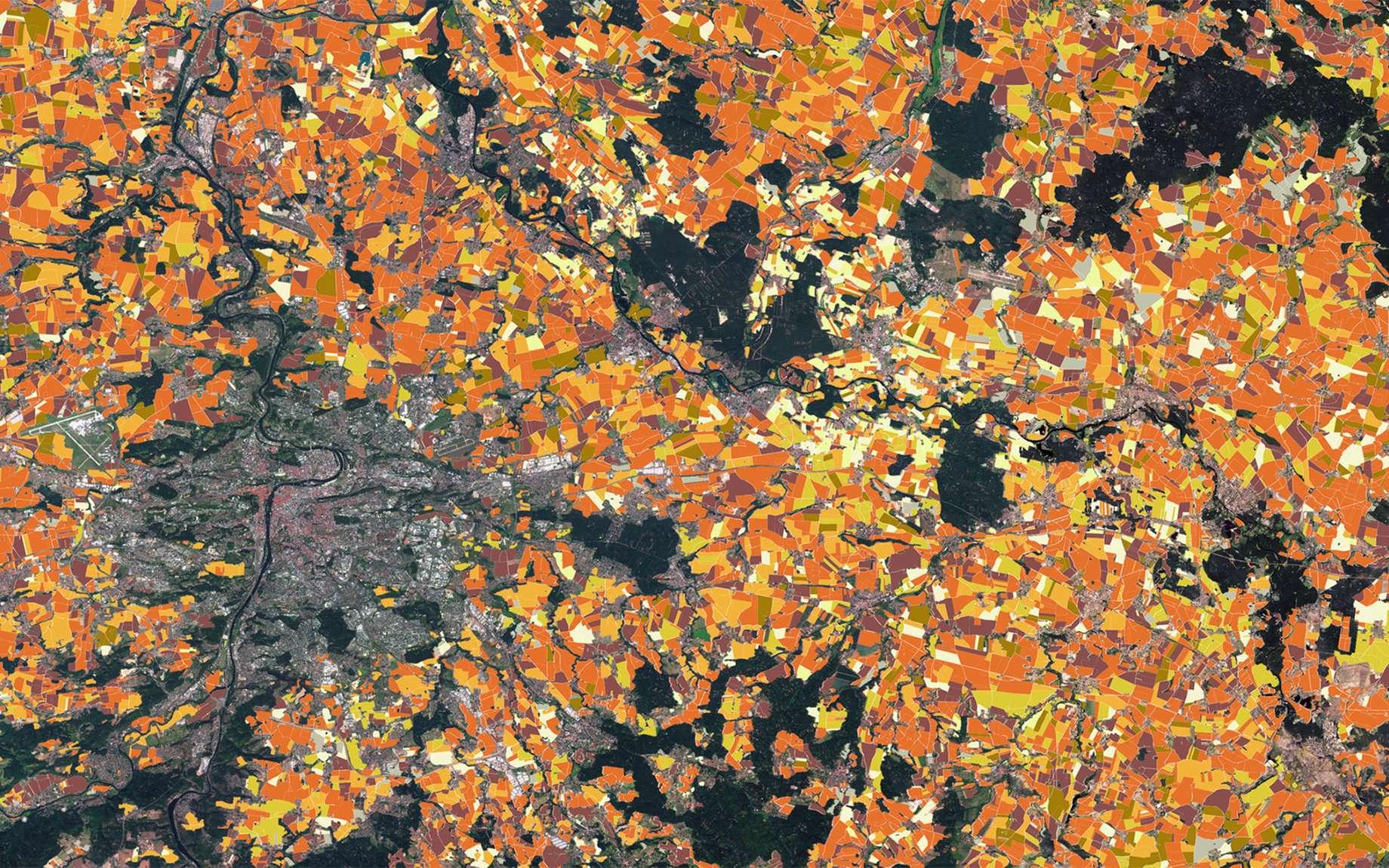 Argos mise sur l'Internet des objets connectés. Dans le domaine de l'agriculture, les satellites d'observation de la Terre sont utilisés pour une très grande variété d'applications et de services de précision, comme la surveillance des cultures, le contrôle des surfaces et de l'occupation des sols, l'irrigation et la gestion des cultures en engrais et produits phytosanitaires. © Copernicus Sentinel Data