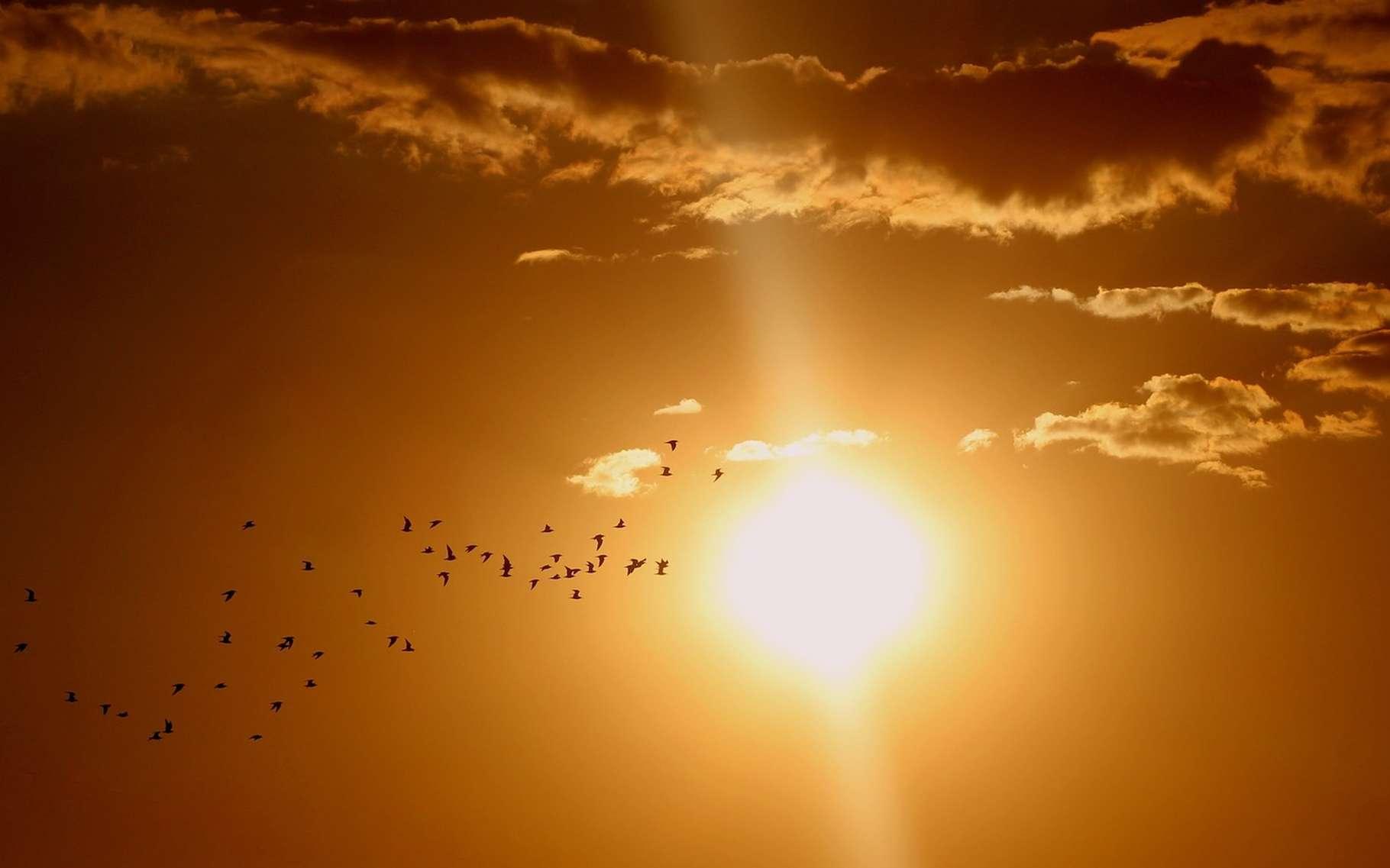 Un héliographe donne la valeur de l'ensoleillement en un lieu. © AdinaVoicu, Pixabay, DP