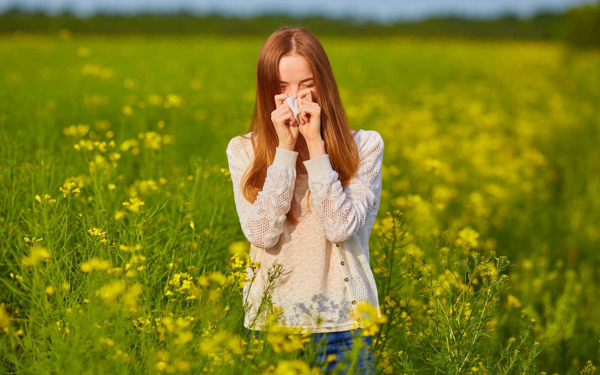 Printemps et été : deux saisons redoutées par les personnes allergiques. © Saharrr, Adobe Stock