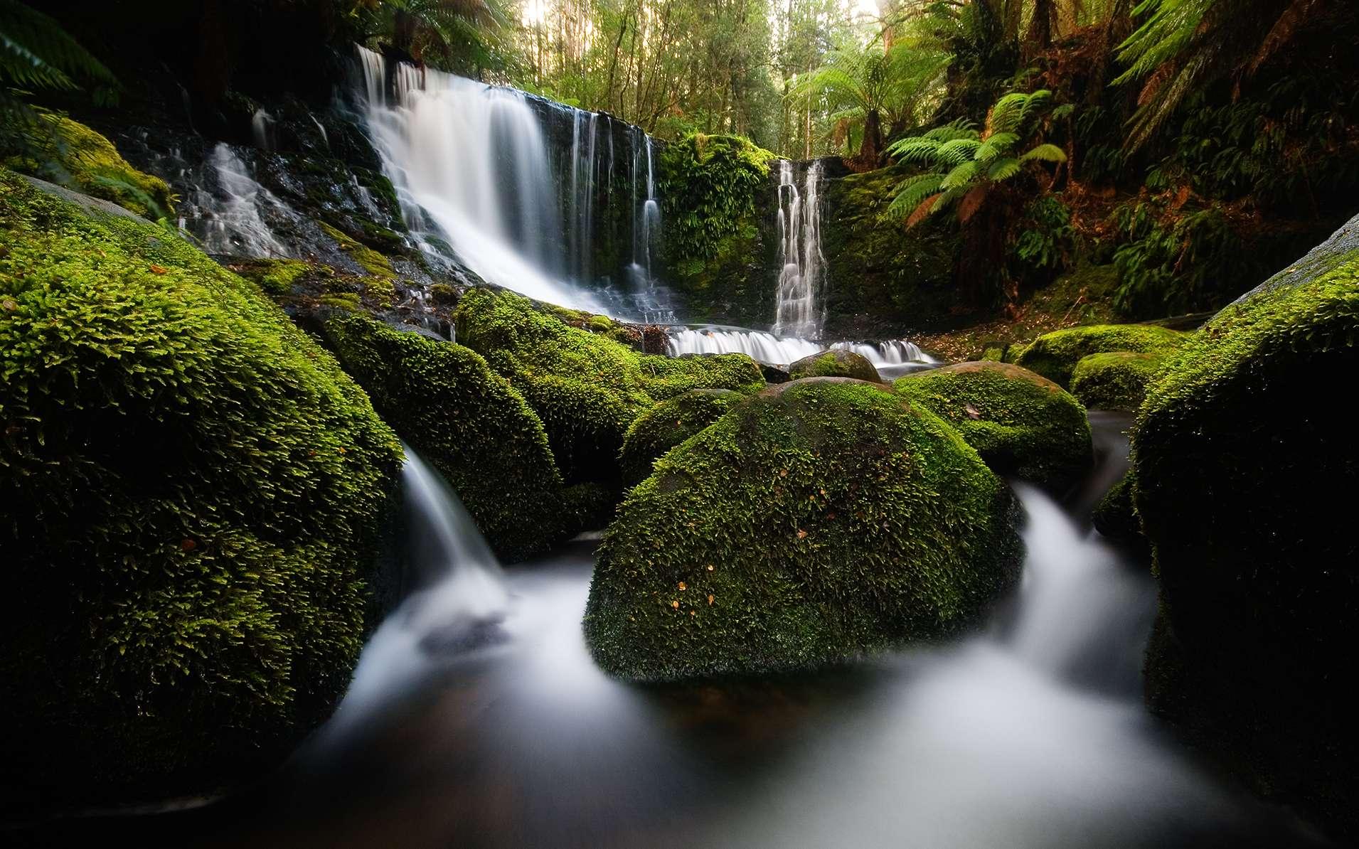 Chutes d'eau du parc national de mont Field. © JJ Harrison, Wikimedia, cc by sa 3.0