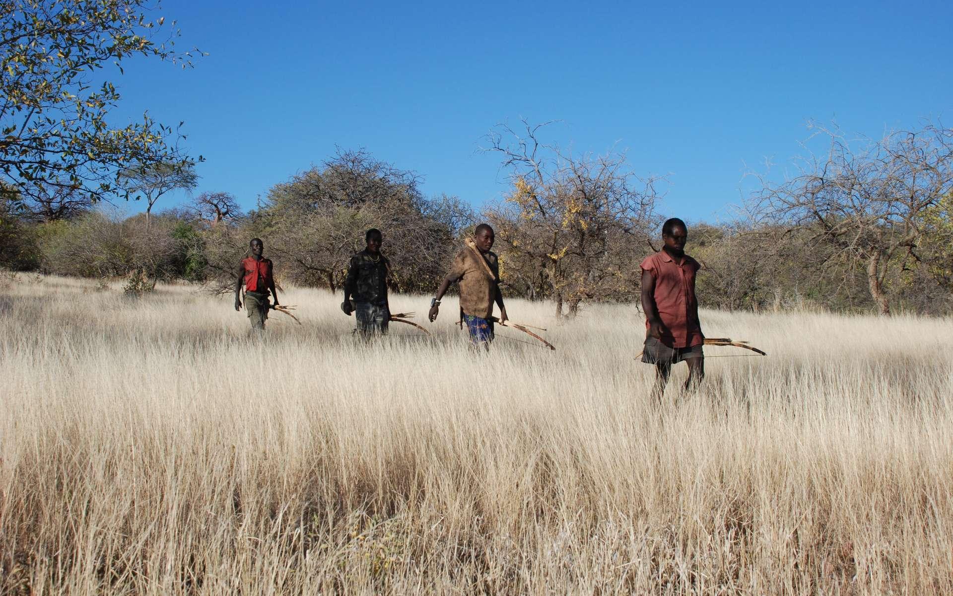 Les Hadzas de Tanzanie ont porté des bracelets GPS qui ont permis à des anthropologues d'étudier leurs mouvements pendant la chasse ou la recherche de nourriture. © Brian Wood, Yale University
