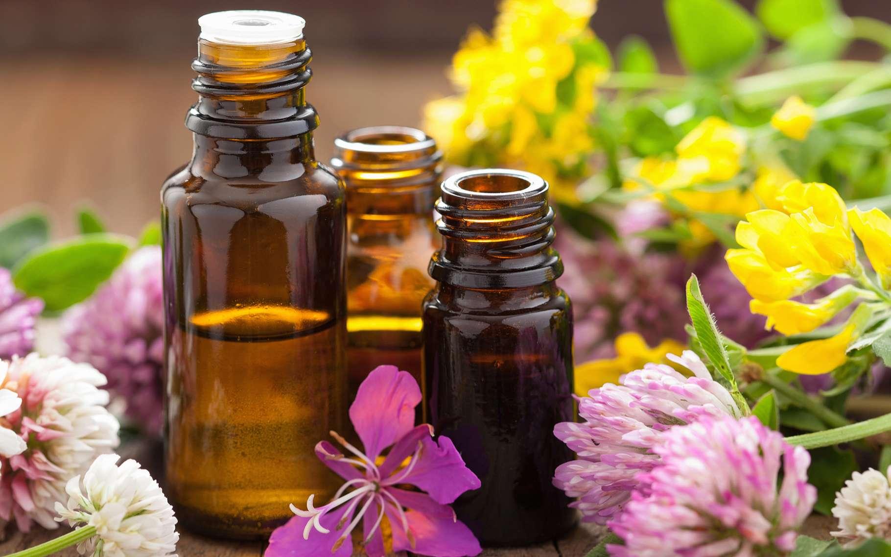 Huiles végétales et huiles essentielles sont des produits différents, mais utilisés tous deux notamment pour notre bien-être. © Olga Miltsova, Shutterstock