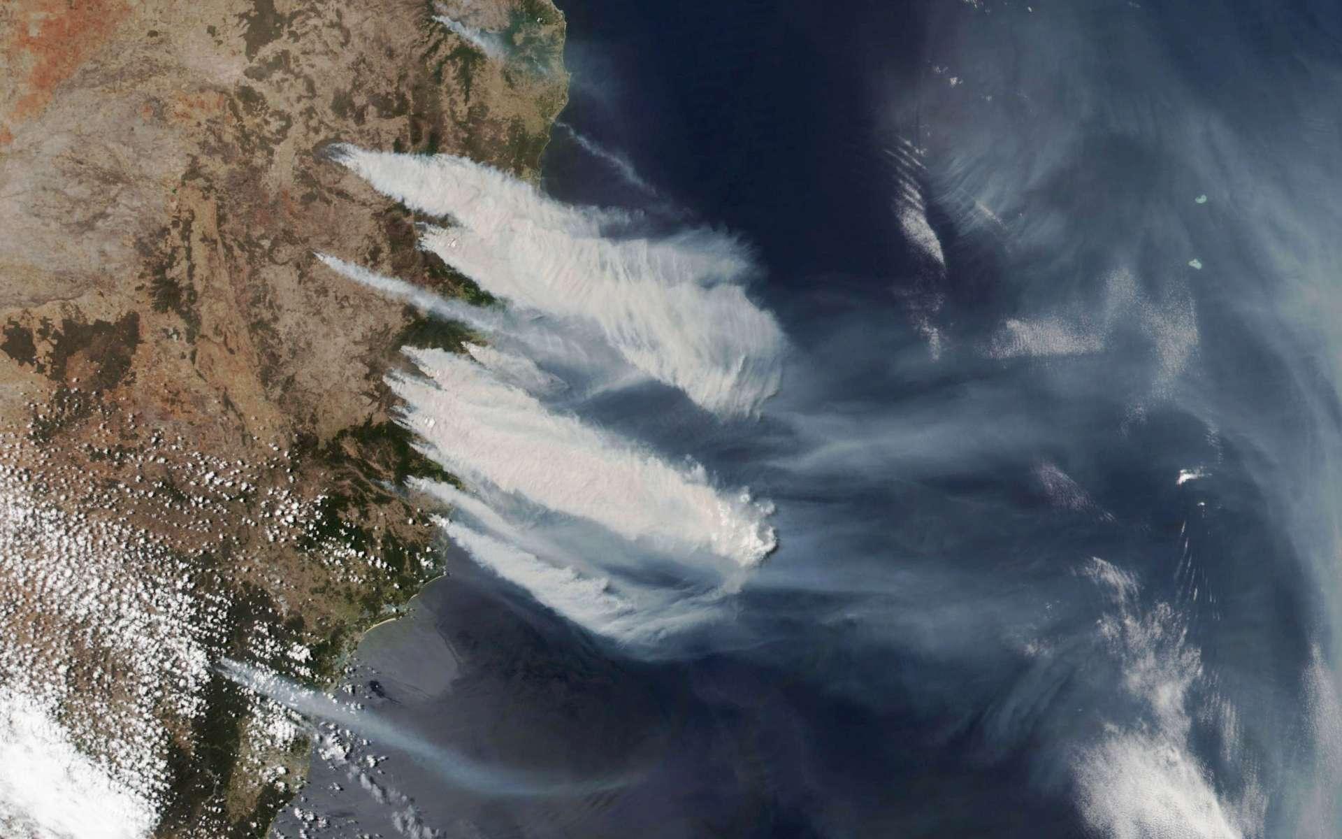 Les feux de brousse font rage dans l'État de la Nouvelle-Galles-du-Sud en Australie. Image prise de l'espace par le satellite Suomi NPP le 8 novembre 2019. © Nasa, NOAA