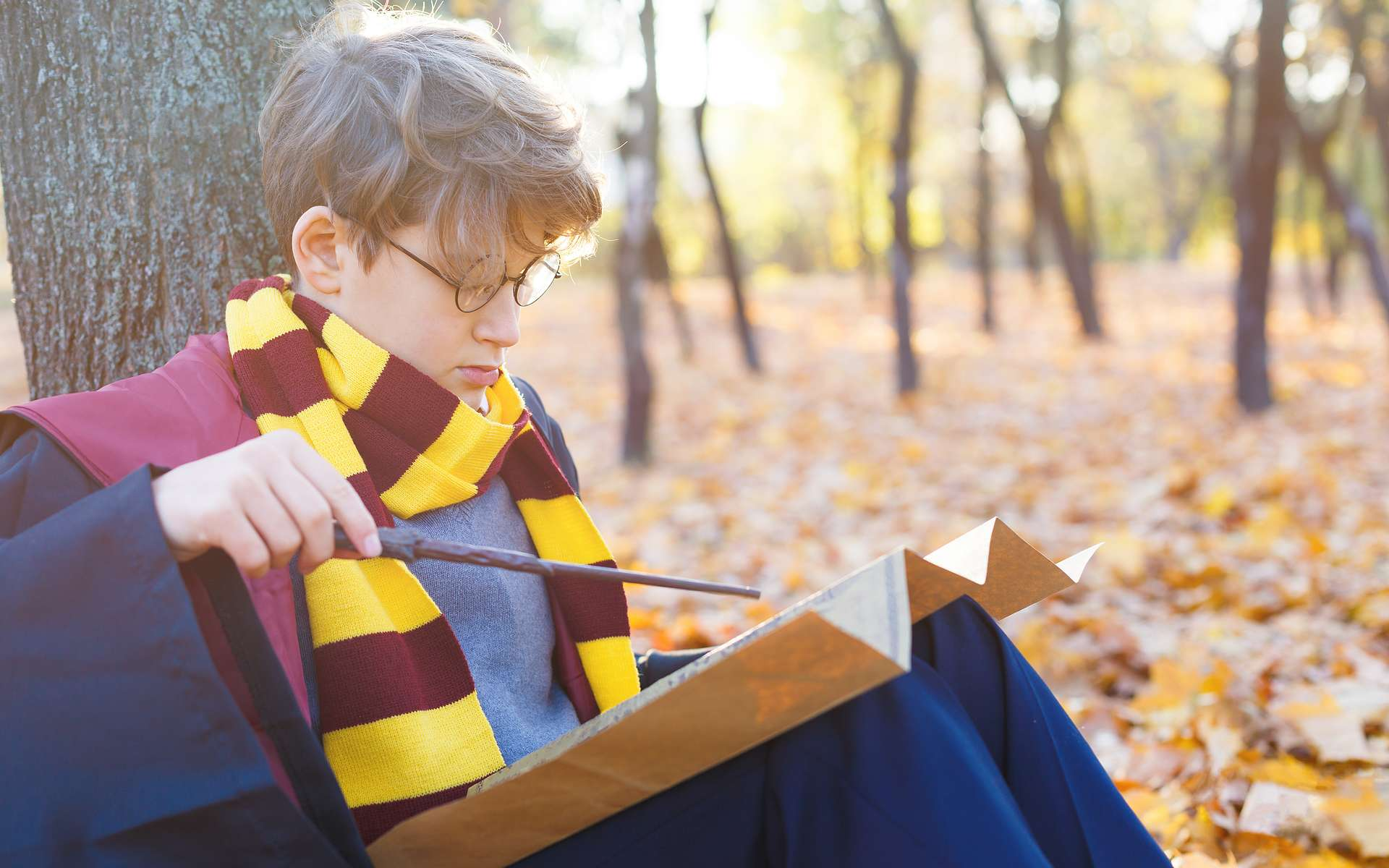 Harry Potter nous sert à vulgariser des notions d'épistémologie. © Natali, Adobe Stock