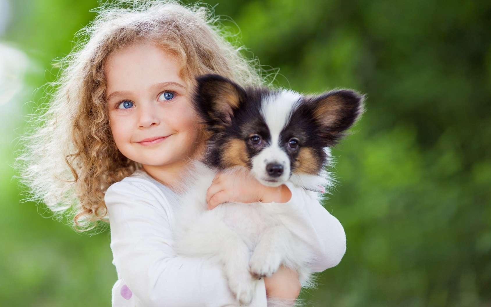 Des étudiants semblaient plus perturbés par la souffrance d'un chien que celle d'un adulte humain. © Natalia Chircova, Fotolia