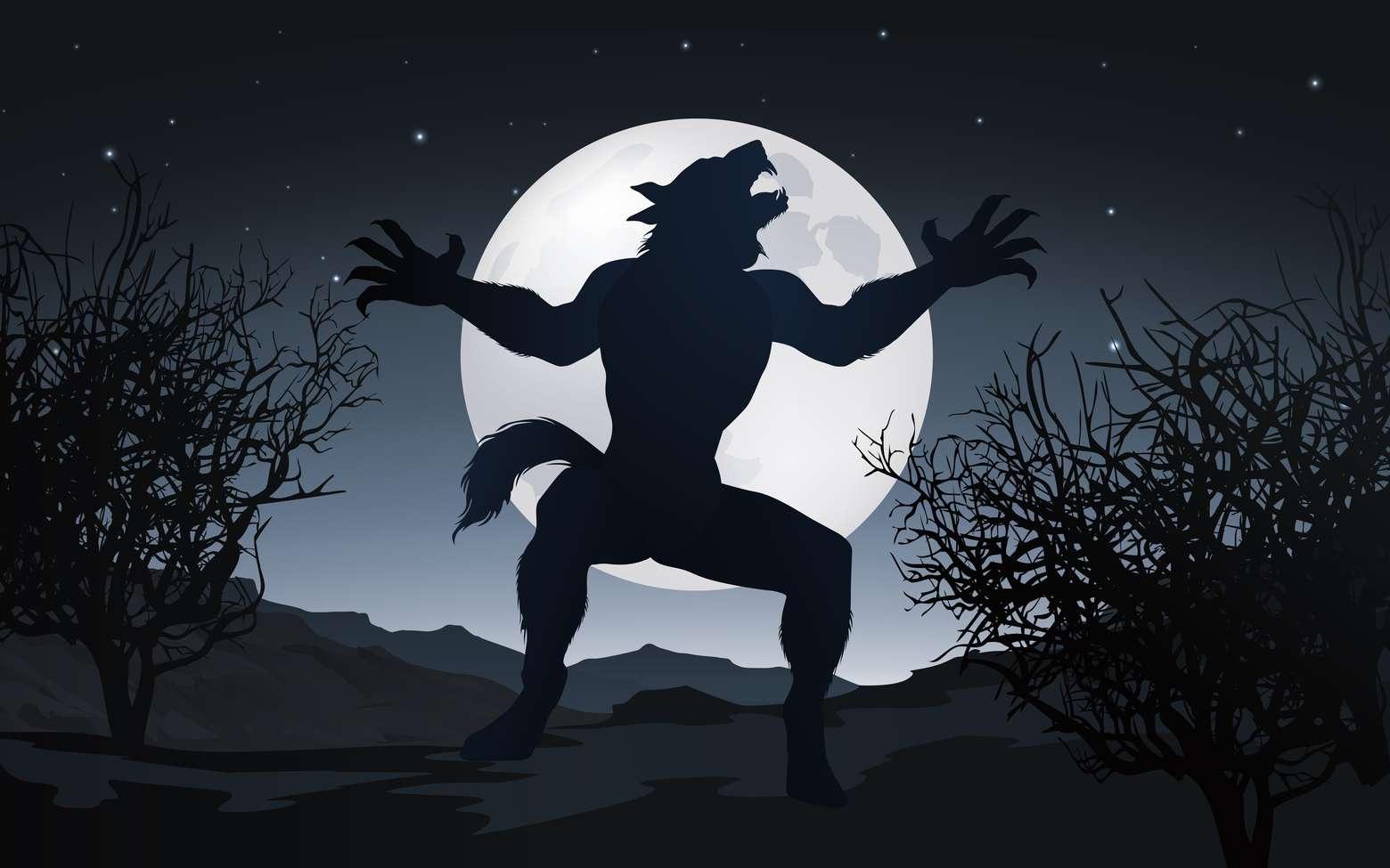 La Pleine Lune apporte des maléfices, libère des monstres, excite les sorcières et rend fous les humains. © pict rider, Fotolia
