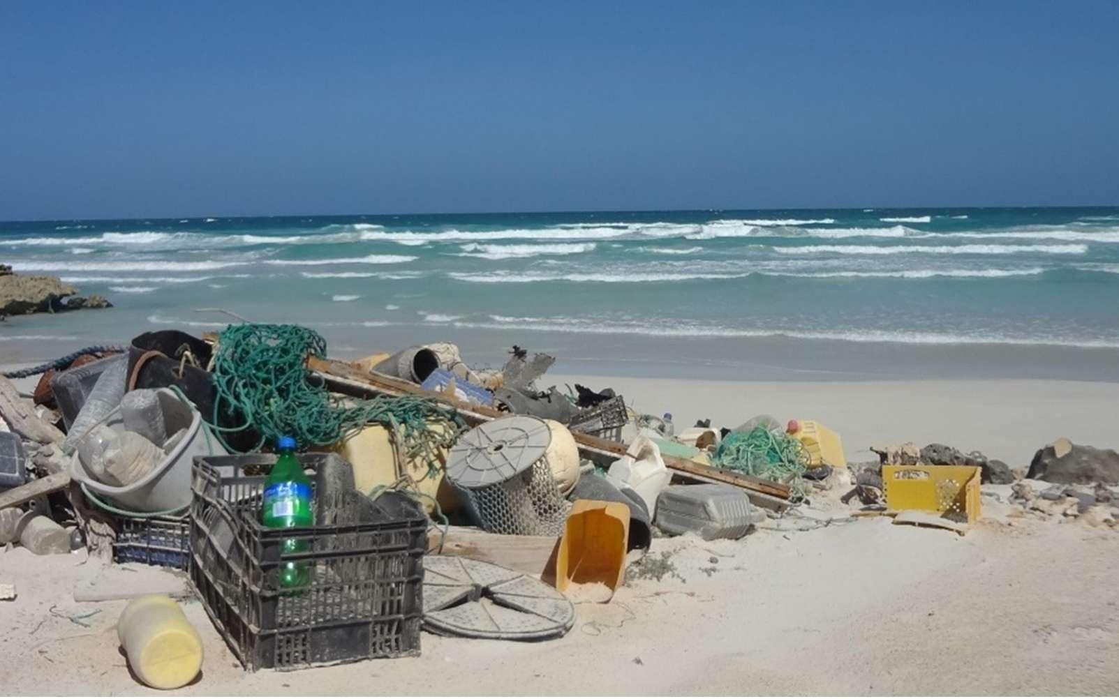 Tôt ou tard, une grande partie des déchets en plastique terminent leur vie dans les océans. © J. Veiga
