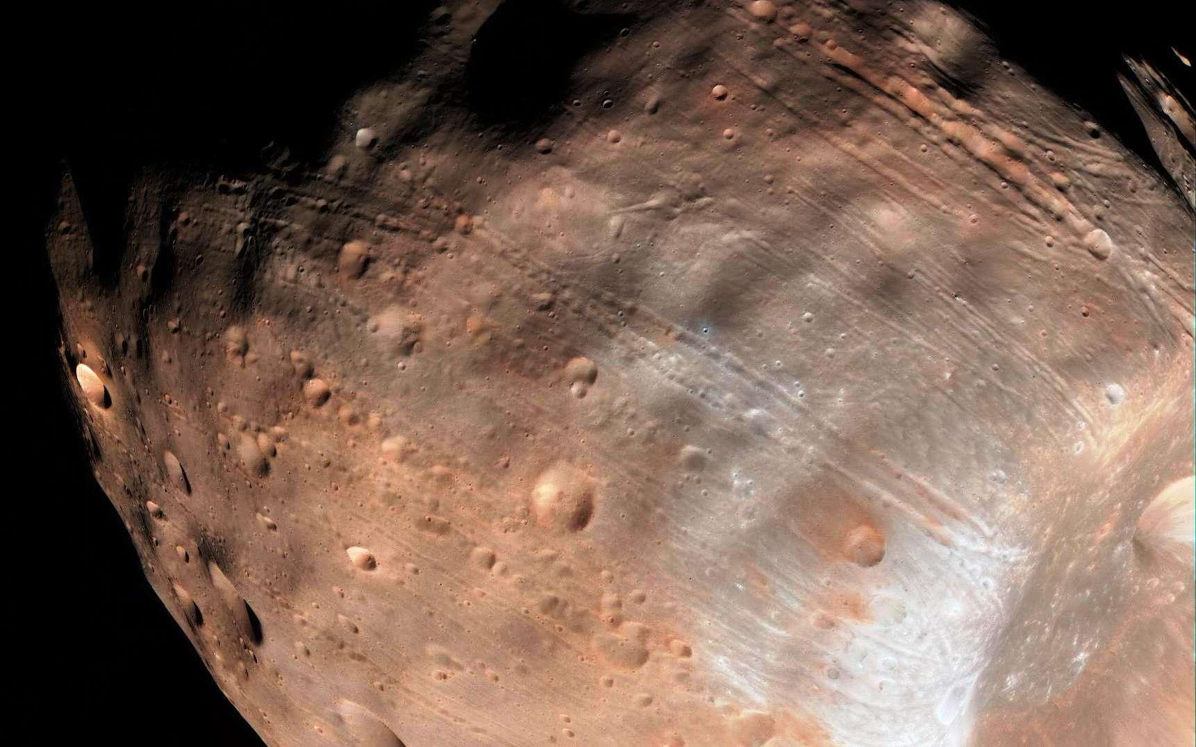 Phobos (27 x 22 x 18 km), l'une des deux petites lunes de Mars, n'est qu'à 6.000 km de la surface de la Planète rouge. Comme le montre cette photo, elle présente un curieux réseau de sillons à sa surface. © Nasa, JPL-Caltech, University of Arizona