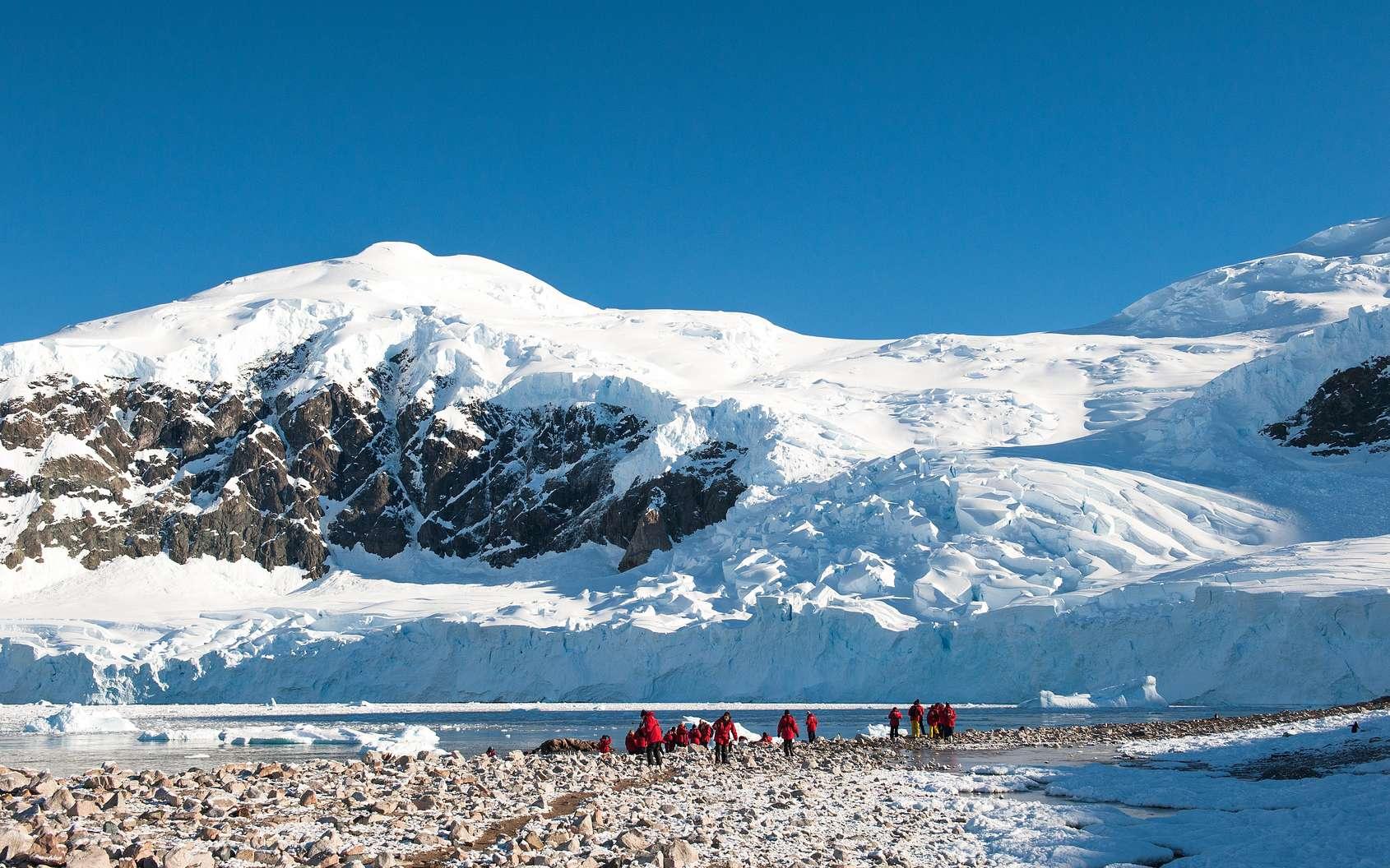 Une équipe de scientifiques capte un signal ultrason inattendu : l'émetteur se situe à plus de 900 mètres de profondeur sous la glace. © Asya M, Fotolia