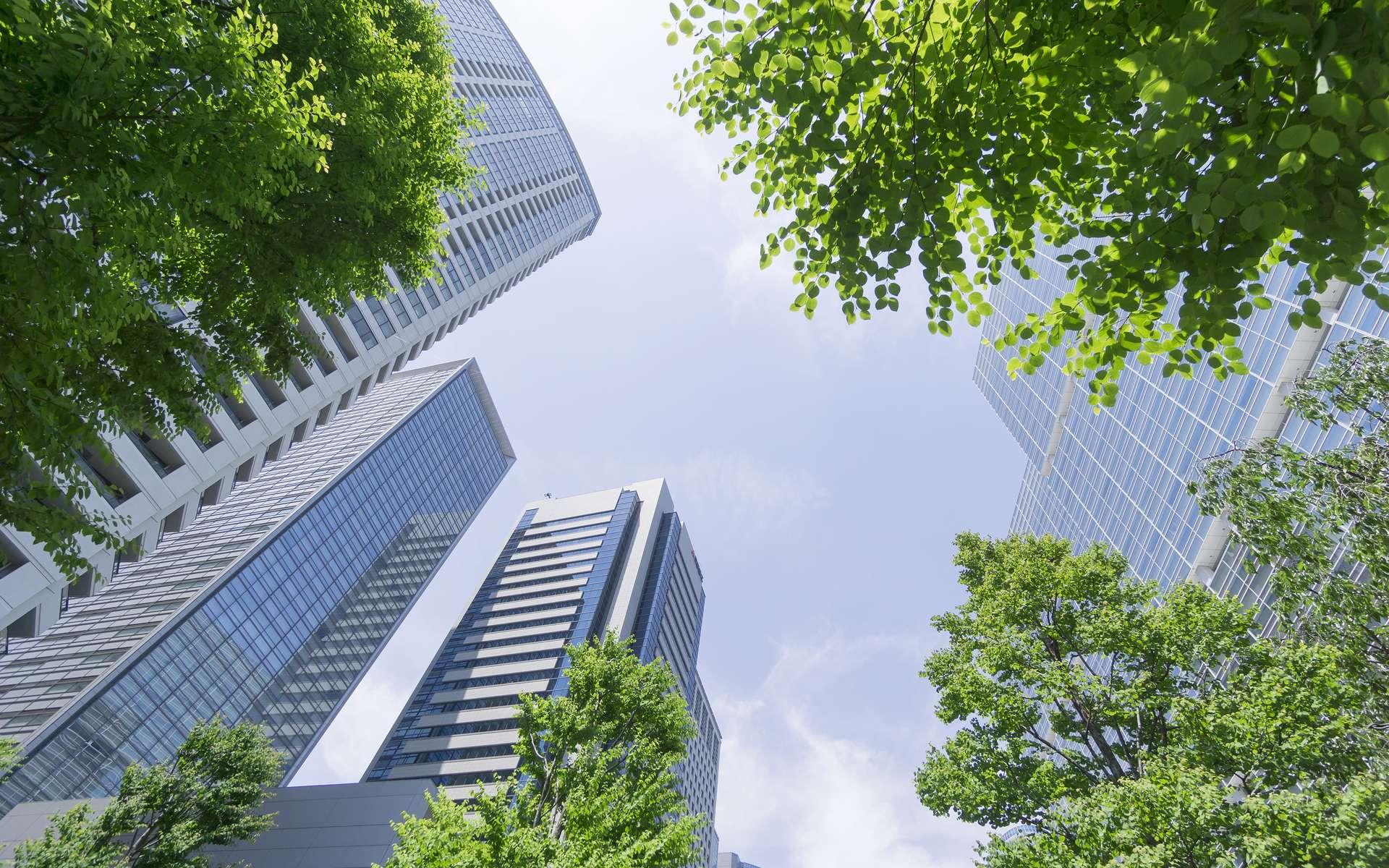 Comment prendre le pouvoir pour engager une transition écologique et changer le monde ? © Paul, Adobe Stock