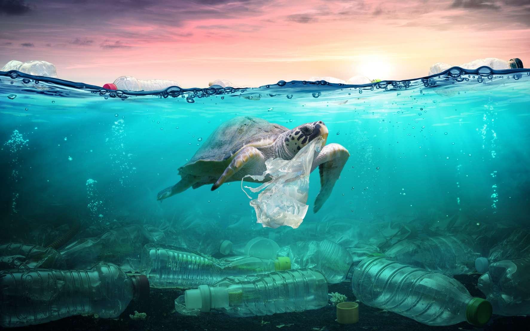 Chaque année, 4 à 12 millions de tonnes de déchets de matière plastique atteignent l'océan, où cette masse s'accumule en se fragmentant. La solution est un recyclage systématique. © Romolo Tavani, fotolia
