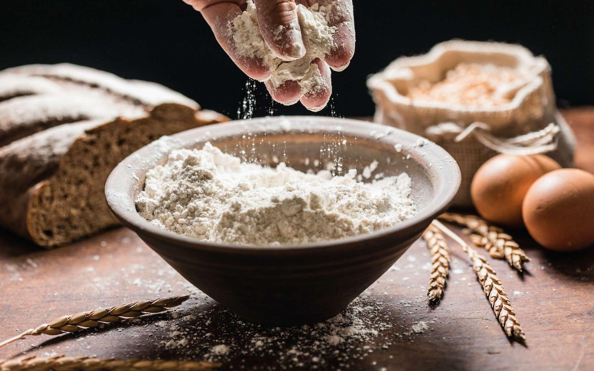 Quels ingrédients pour remplacer la farine ? © Maksim Shebeko, Adobe Stock