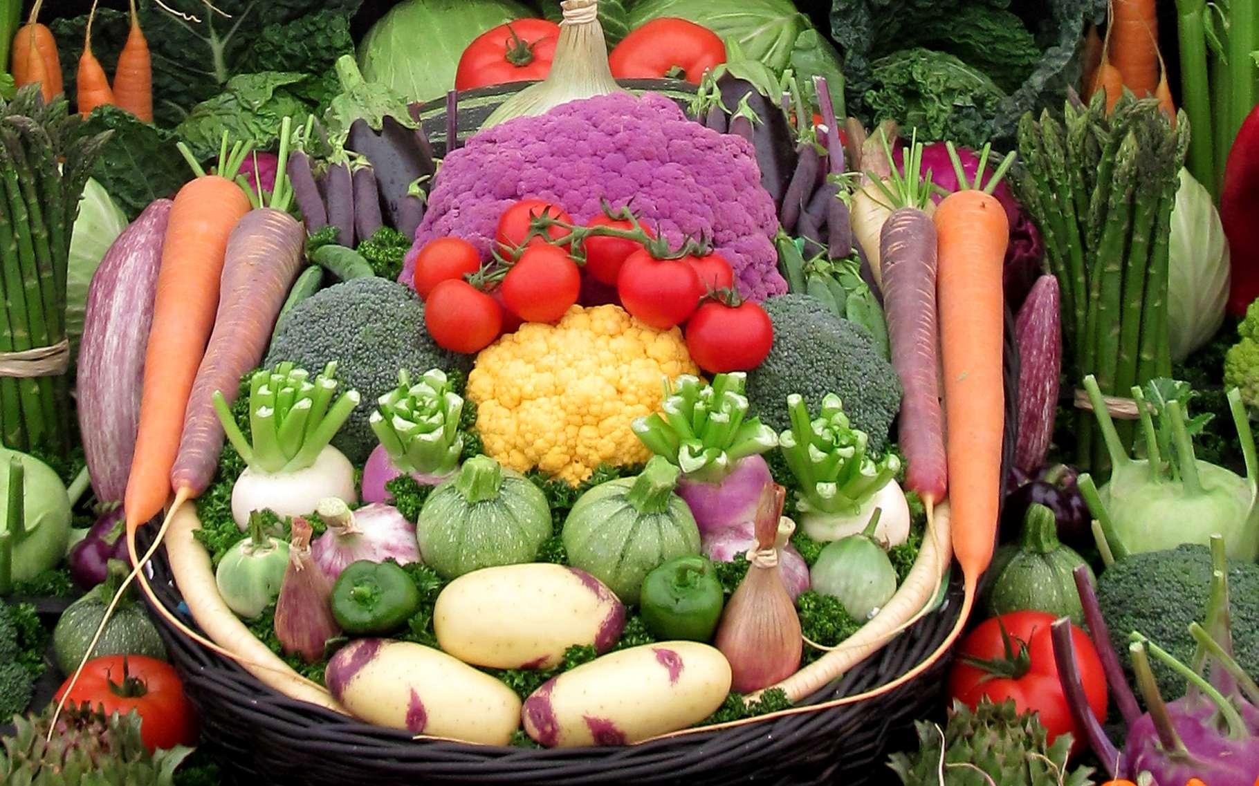 Un bon régime alimentaire permet d'être en meilleur santé. Il ne permet pas d'éviter les infections. © bit24, Adobe Stock