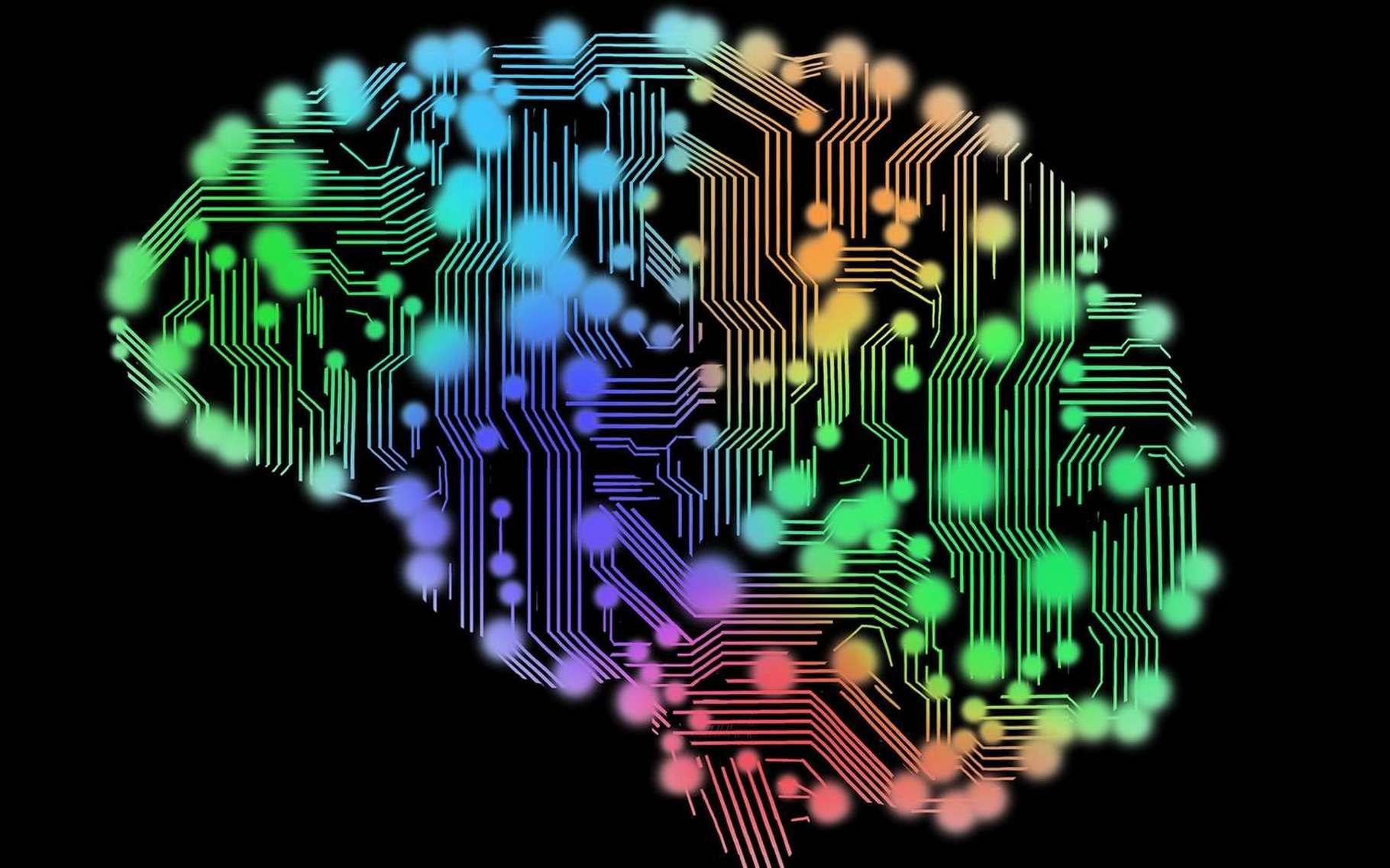 Un minicerveau artificiel aussi rapide que le cerveau humain. © Peshkova, Fotolia