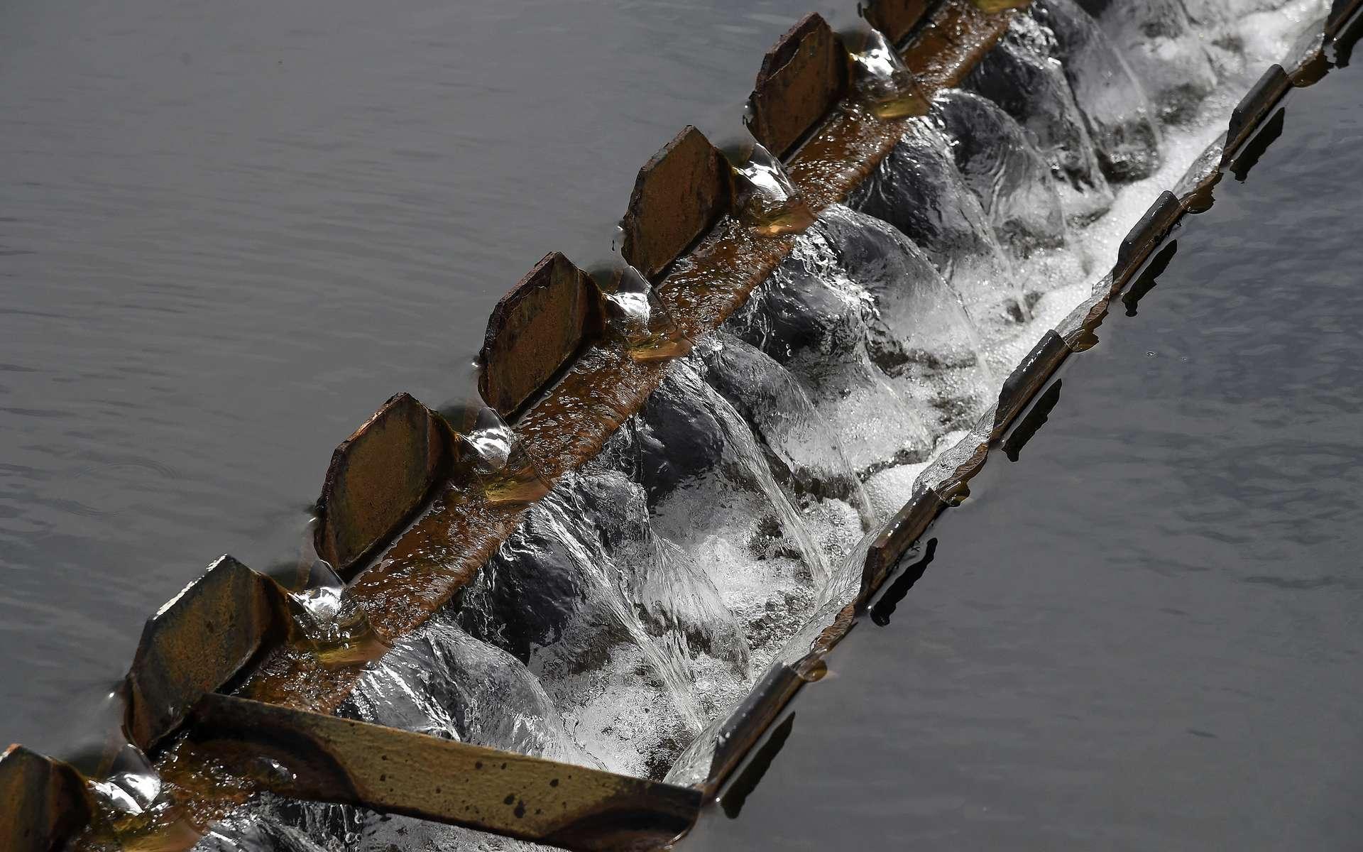 Les Californiens sont désormais prêts à utiliser l'eau retraitée, comme le font déjà les Texans. © AFP Photo, Robyn Beck