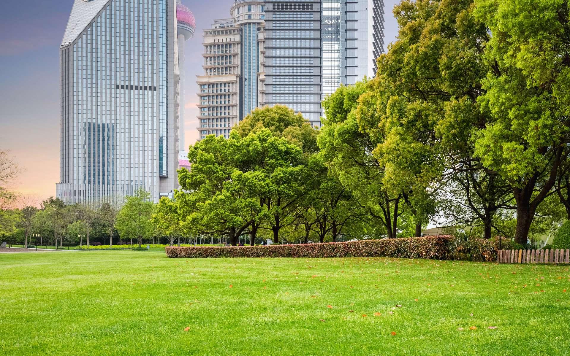 Des buildings modernes à l'arrière plan d'un parc urbain © chuyu2014 / Envato