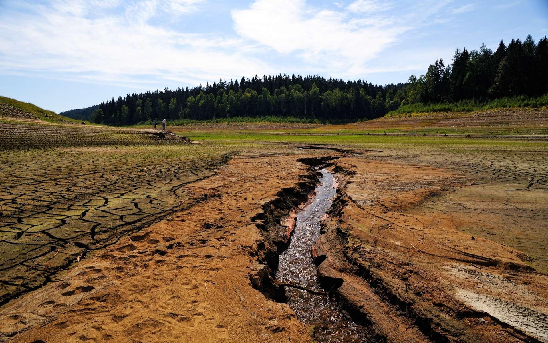 Les activités humaines augmentaient déjà l'érosion des sols il y a 4.000 ans. © Torsten Becker, Adobe Stock