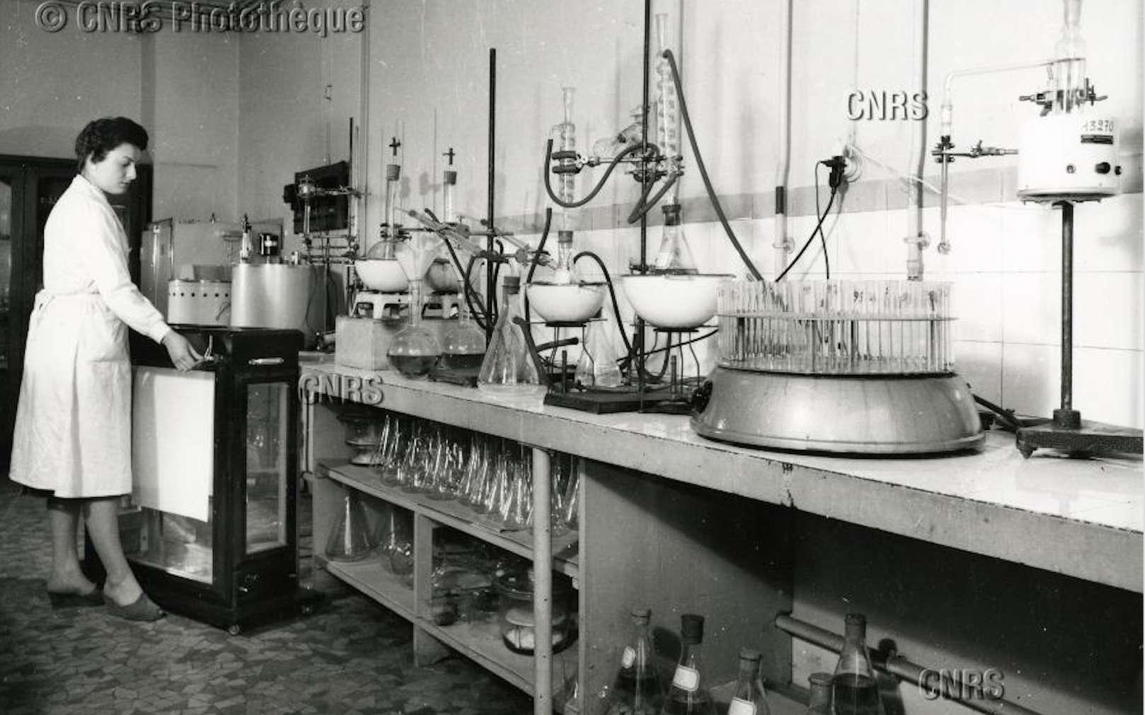 Laboratoire de biologie du froid de M. Ulrich, pour l'étude de la conservation par le froid des denrées d'origine végétale, au CNRS à Bellevue, Meudon, le 17 février 1959. © Fonds historique, CNRS Photothèque