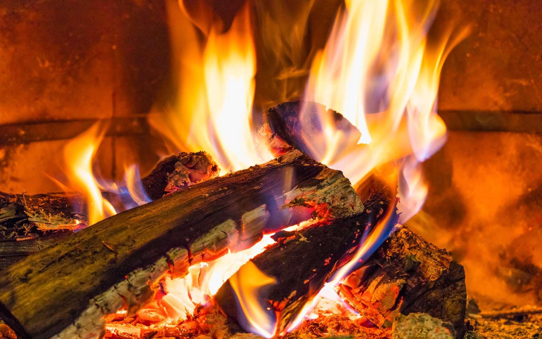 Un feu survient lorsque se produit une réaction d'oxydoréduction rapide. © Lobo_Images, fotolia