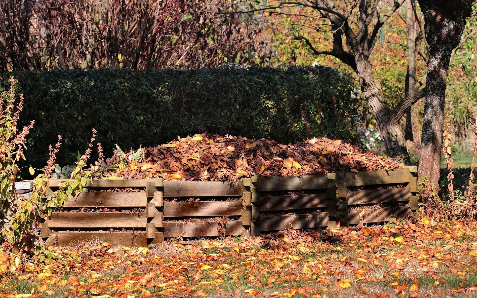 Idéal, le compost de jardin. © Pixel2013, Pixabay, DP