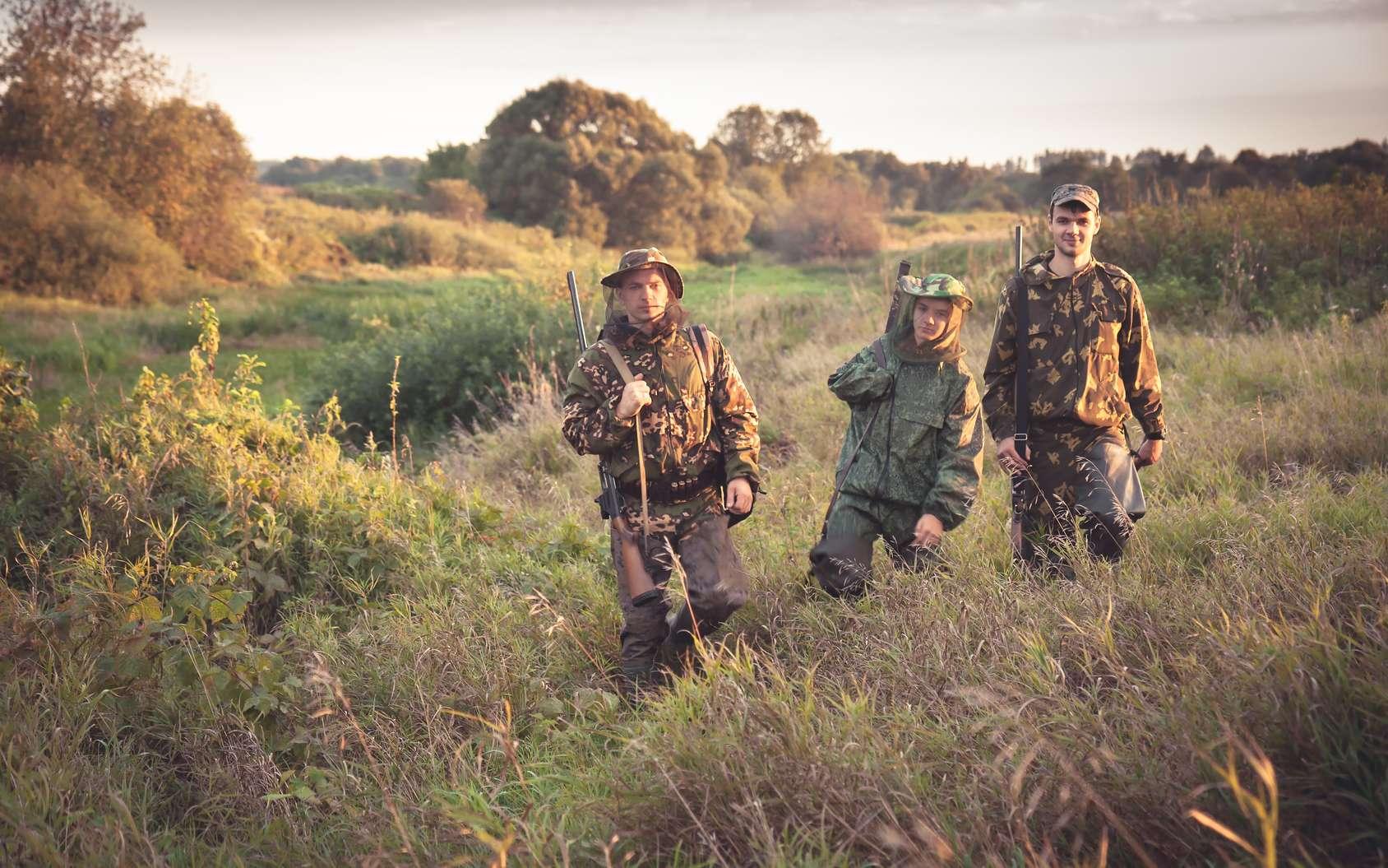 Comment randonner en toute sécurité pendant les périodes de chasse. © splendens, Fotolia