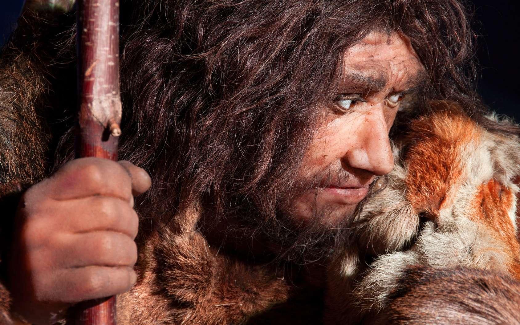 L'Homme de Néandertal devait réaliser des soins dentaires à l'aide de sortes de cure-dents. © procy_ab, Fotolia