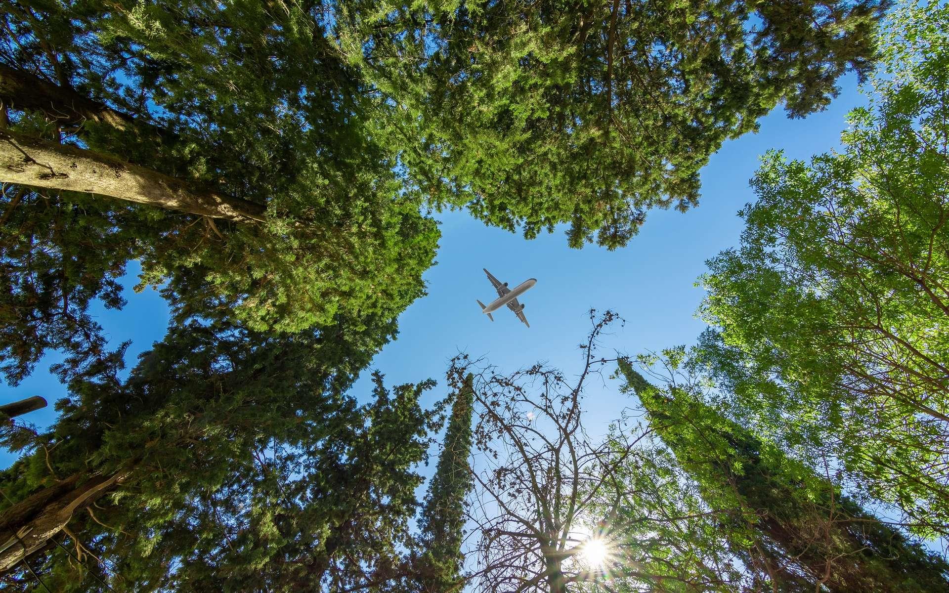 Comme d'autres secteurs d'activité, celui de l'aéronautique doit faire face aux enjeux du développement durable et se réinventer s'il veut poursuivre sa croissance. © yalcinsonat, Adobe Stock