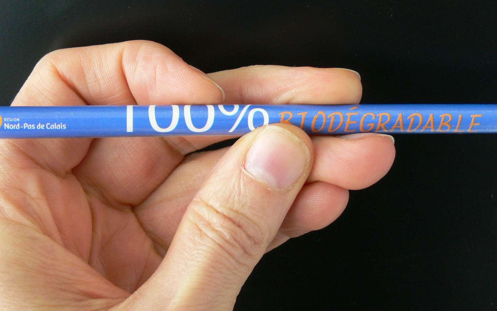 Crayon biodégradable dont le corps est constitué de papier. © Lamiot, Wikimedia, cc by sa 3.0