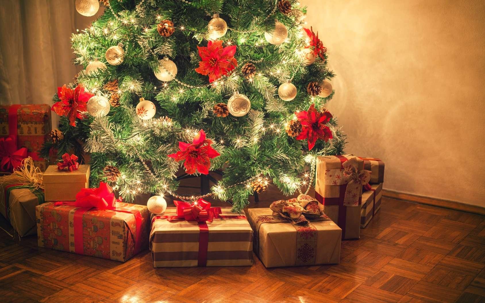Un test ADN pour Noël, vous en rêvez vraiment ? © k2photostudio, Fotolia