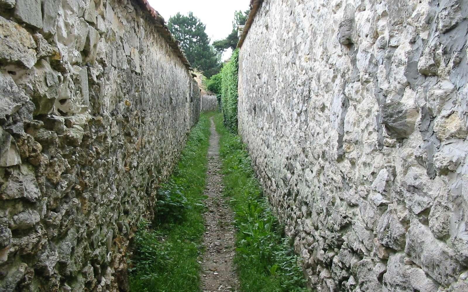Une venelle est une petite rue étroite située entre deux rues plus importantes. © ArséniureDeGallium, CC BY-SA 3.0, Wikimedia Commons