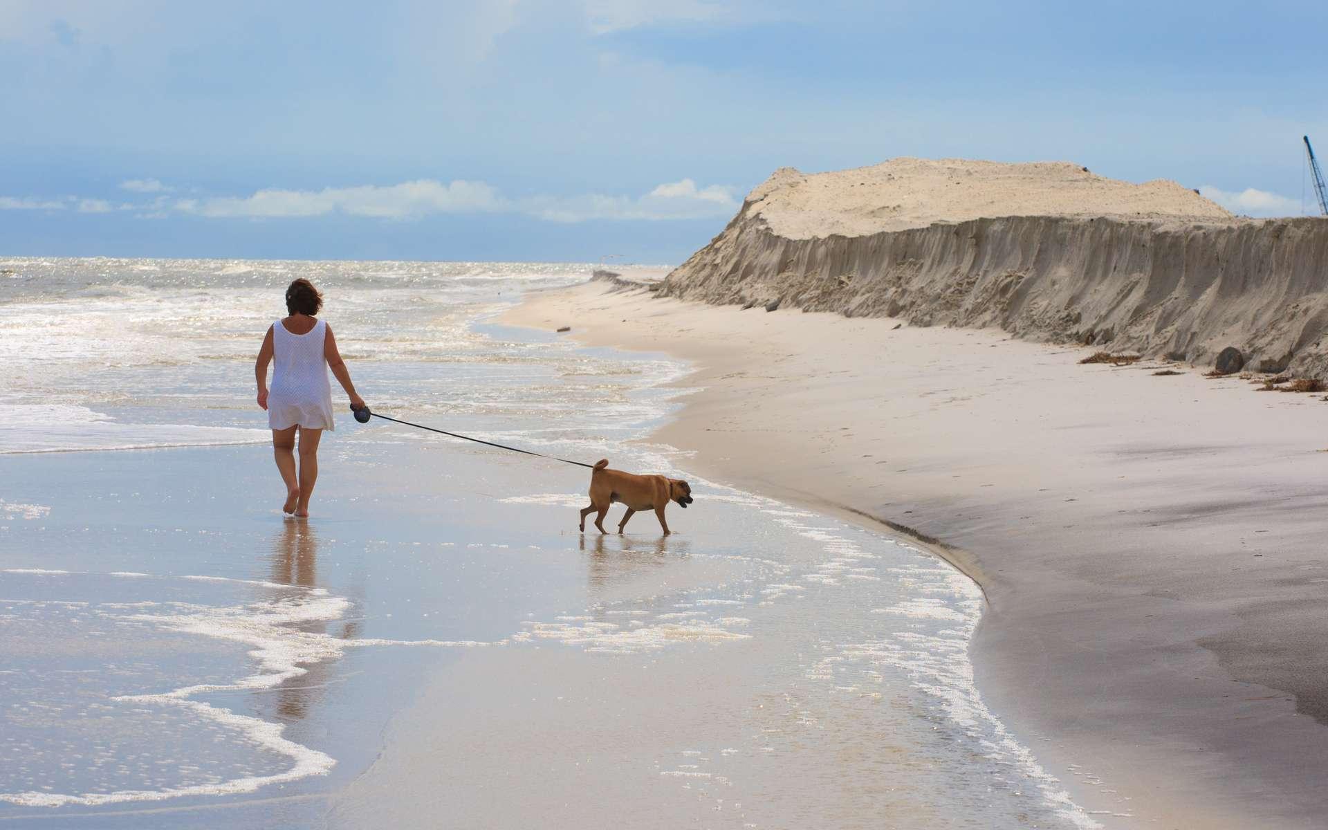 La plage de Dauphin Island, sur les côtes de l'Alabama, le 5 juillet 2010, protégée du pétrole par une digue de sable (à droite). © BP