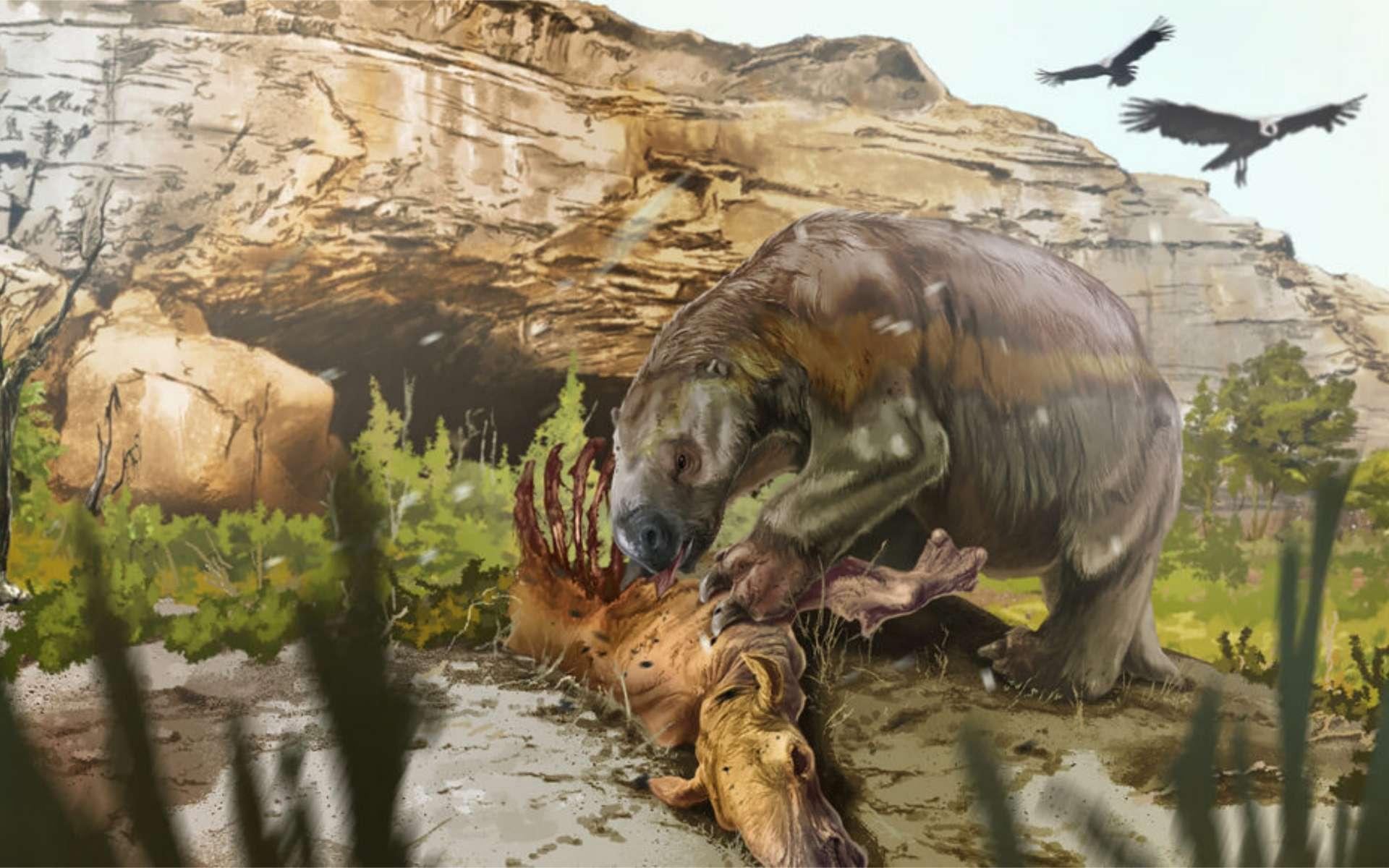 Le paresseux terrestre géant Mylodon darwini pratiquait une activité de charognage il y a près de 12.000 ans. © Jorge Blanco