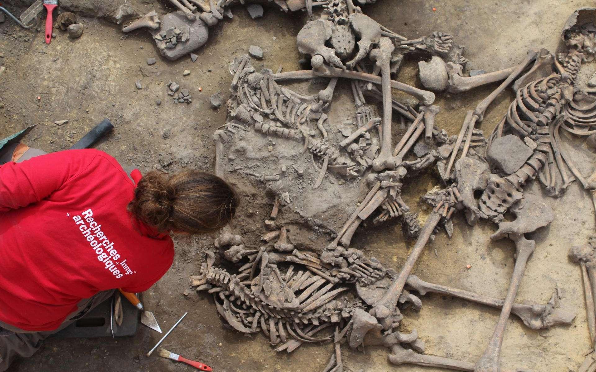 Des corps mutilés, brisés, transpercés : c'est la macabre découverte des équipes de l'Inrap (Institut national de recherches archéologiques préventives) qui ont fouillé durant plusieurs semaines une série de silos datant du Néolithique moyen, plus de 4.000 avant notre ère. © Philipe Lefranc, Inrap