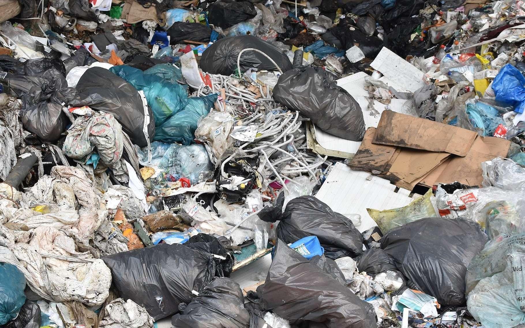 Aujourd'hui, fini — en principe — les décharges sauvages. Nos déchets sont soigneusement collectés et triés avant d'être valorisés ou stockés. © Ben_Kerckx, Pixabay, CC0 Creative Commons