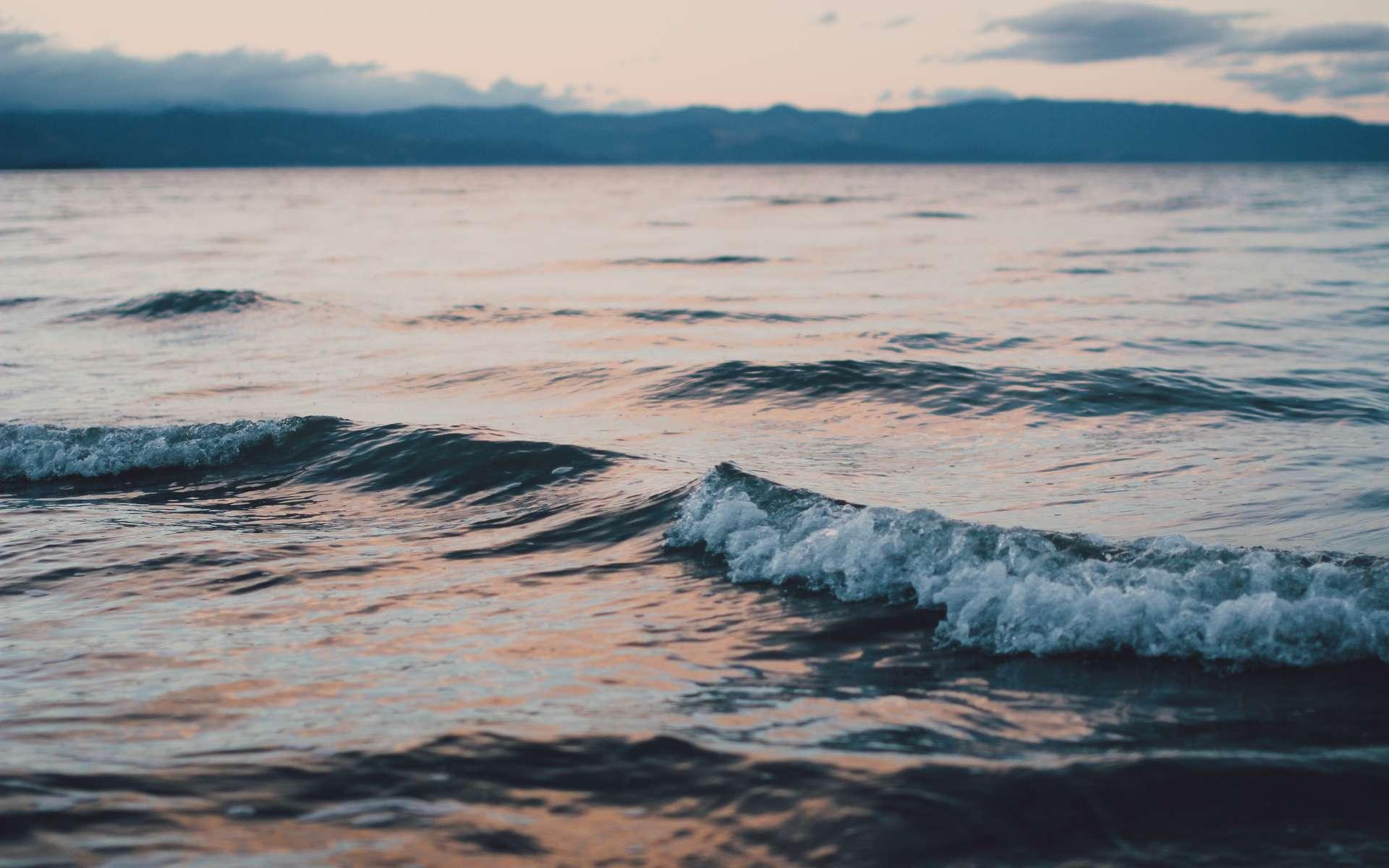 Océans : les zones marines sauvages ont quasiment disparu. © Christine Donaldson, Unsplash