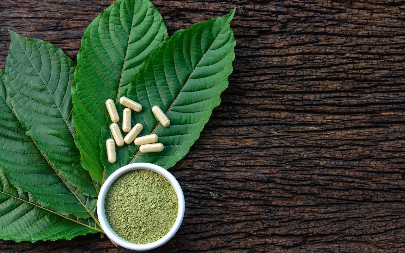 L'utilisation du kratom, une plante d'Asie du Sud-Est, peut provoquer divers effets secondaires. © Yanawut Suntornkij, Fotolia